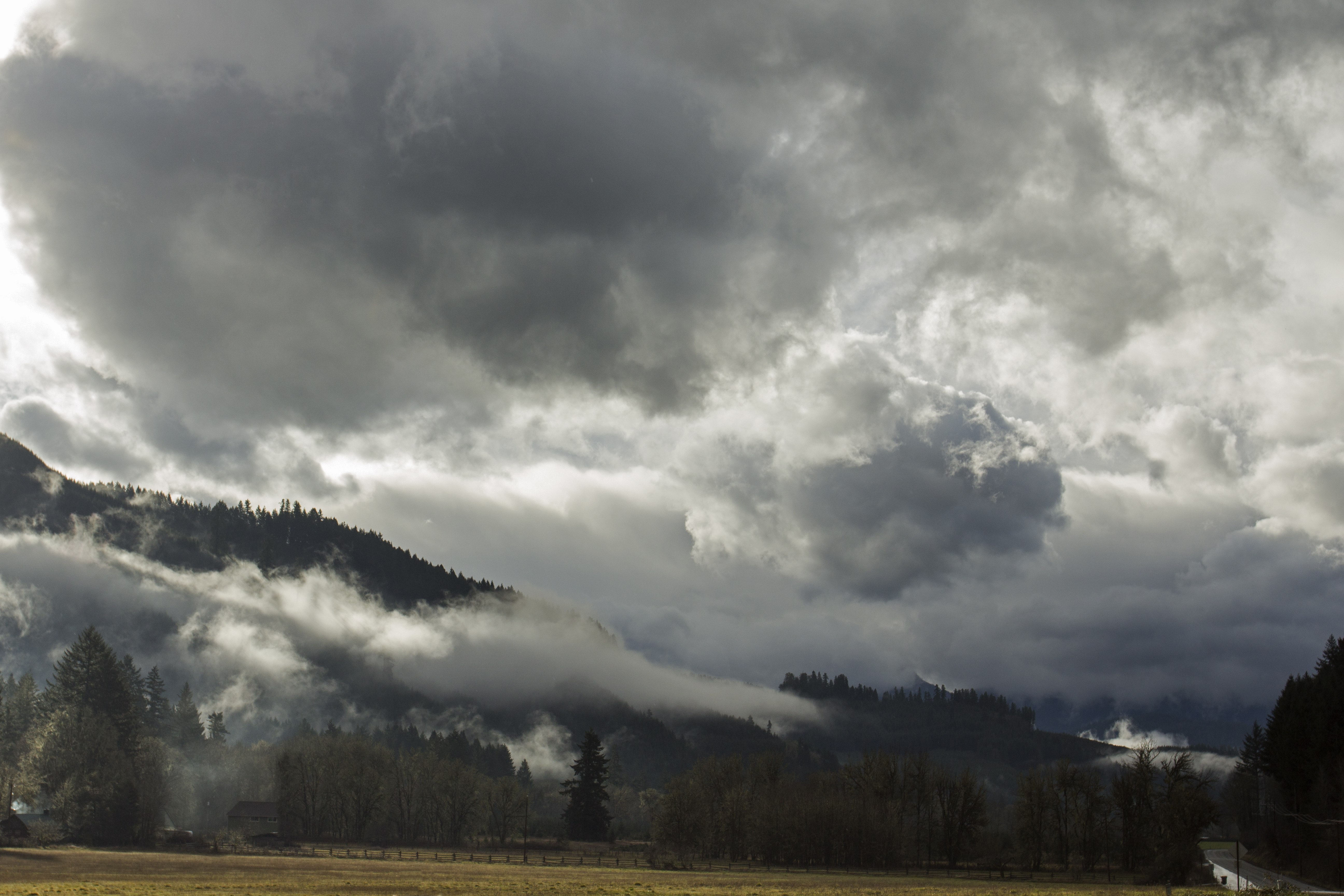 Winter clouds coastal range, Oregon, Clouds, Field, Fog, Forest, HQ Photo