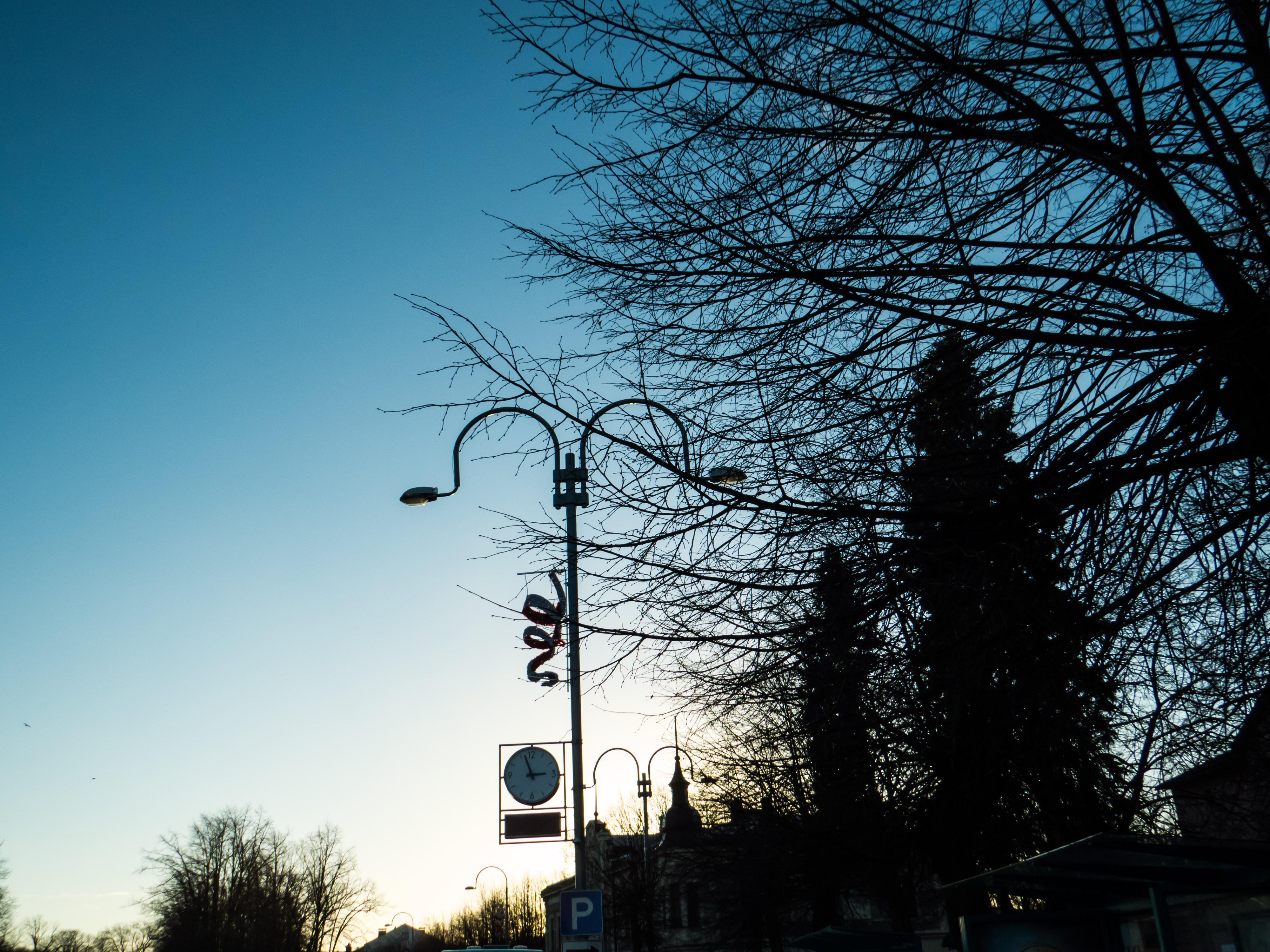 Winter evening photo