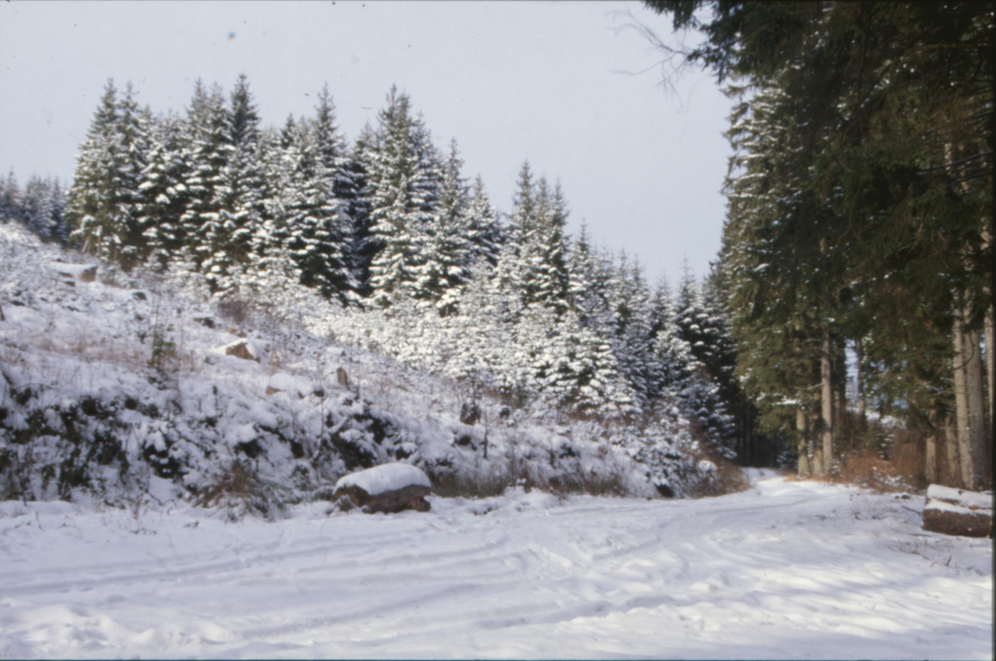 Winter Landscape, Cold, Ice, Landscape, Nature, HQ Photo