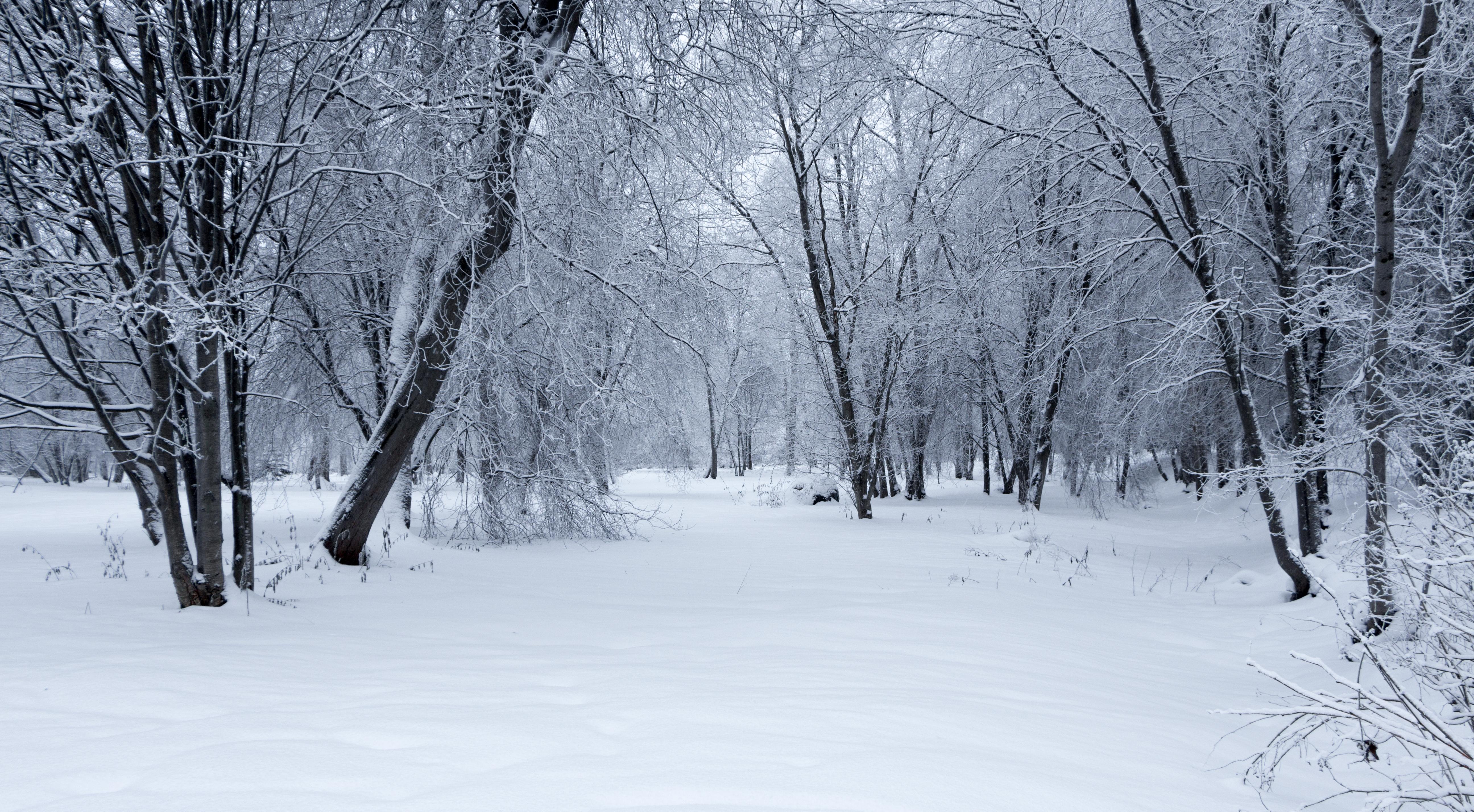 Winter Landscape by Jarzka on DeviantArt