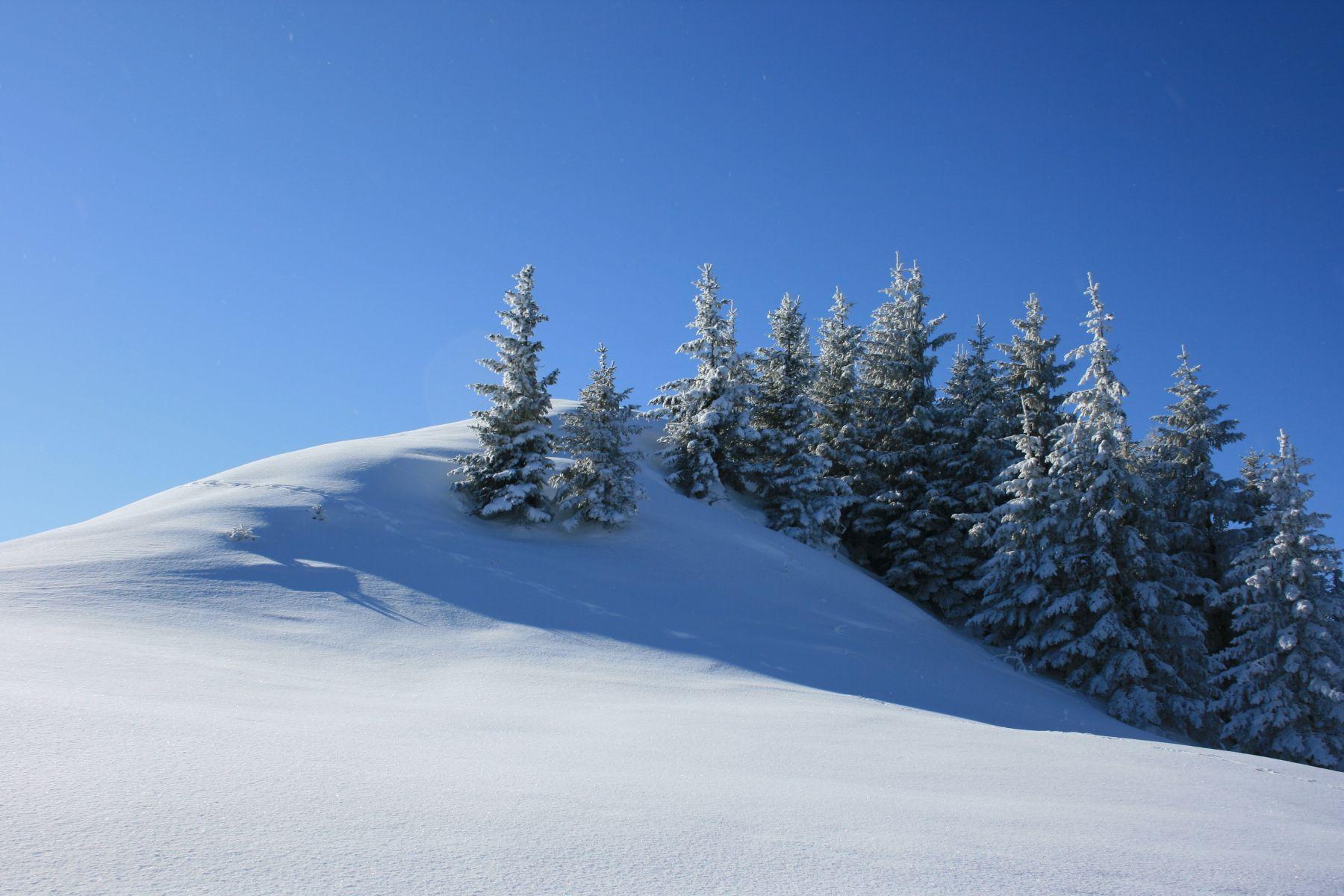 Winter Landscape - Lessons - Tes Teach