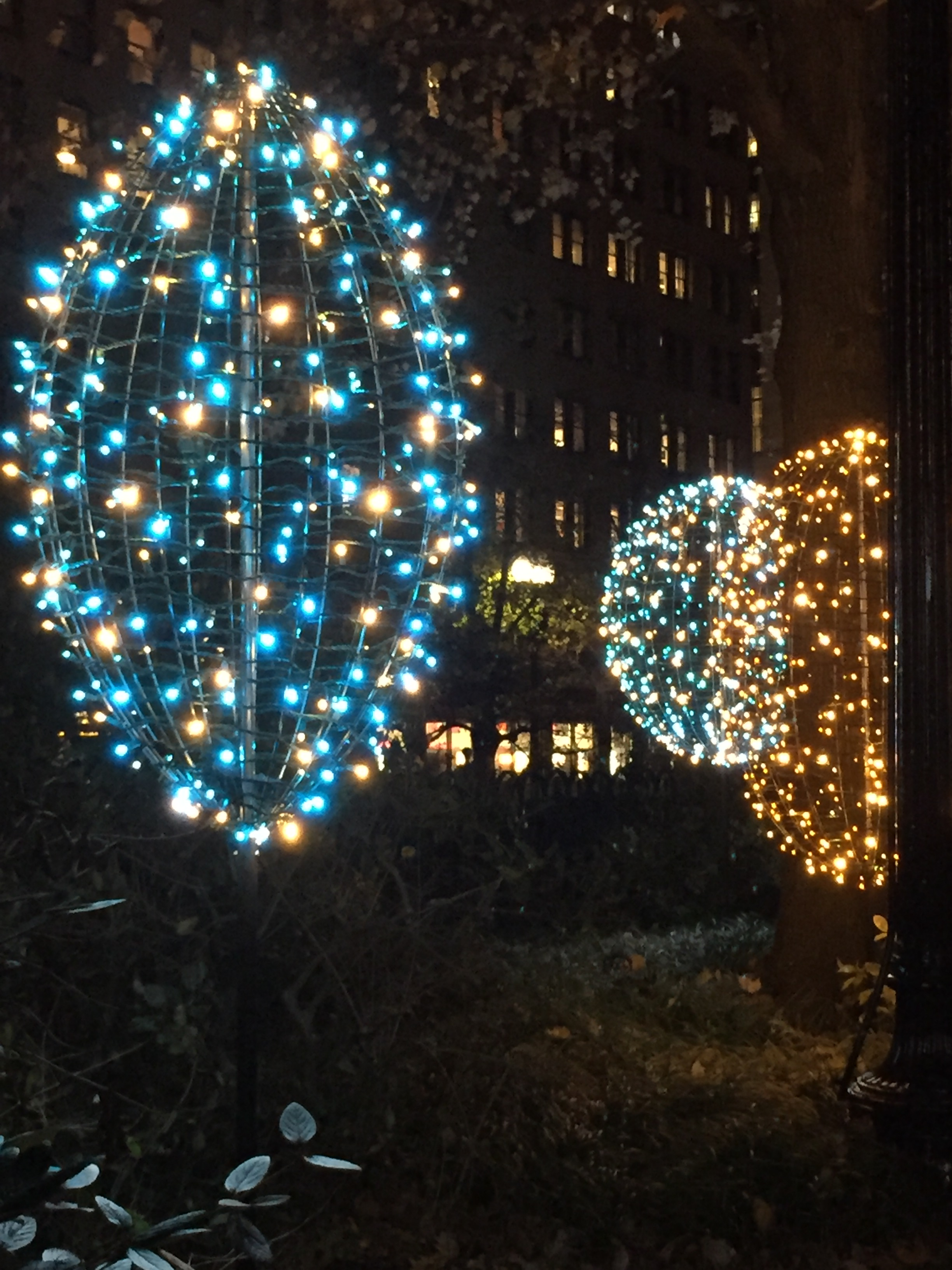 Come See Our New Winter Lights! | Norman B. Leventhal Park