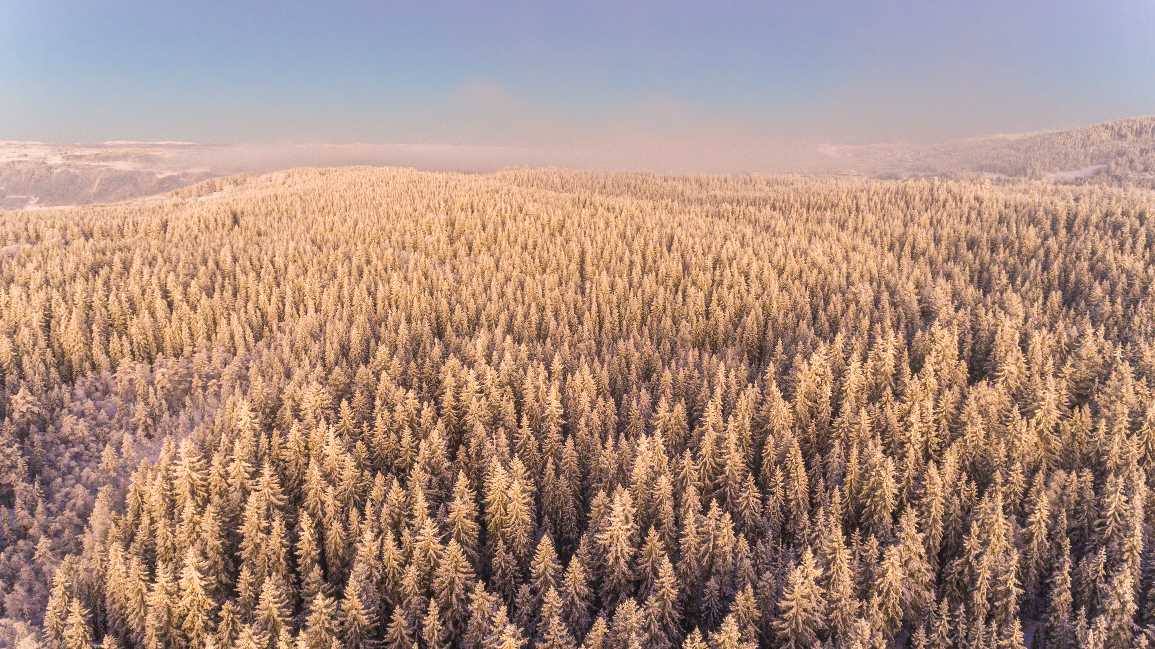 Winter Morning, Aerial, Norway, White, Weather, HQ Photo
