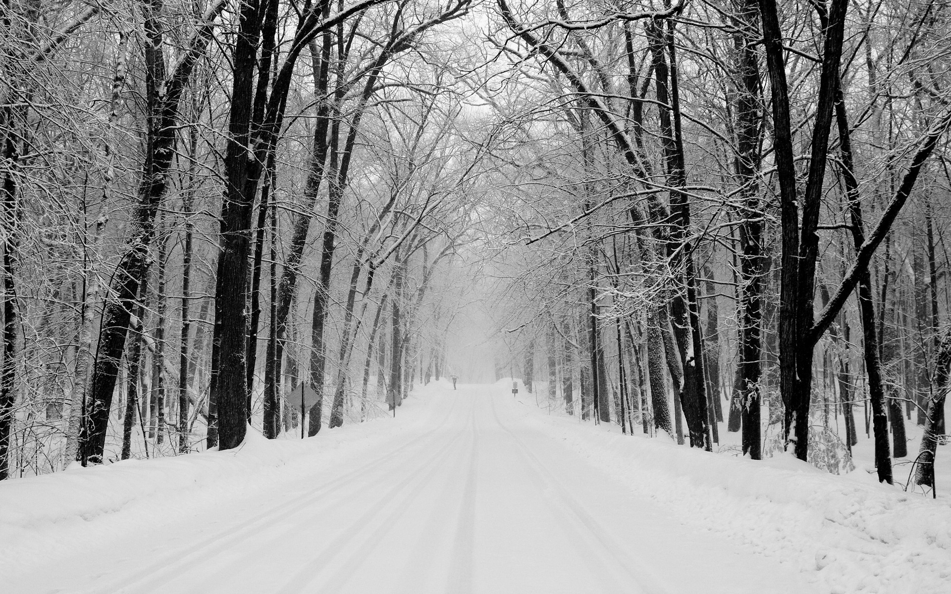 Snowy Road Wallpaper Winter Nature Wallpapers in jpg format for free ...