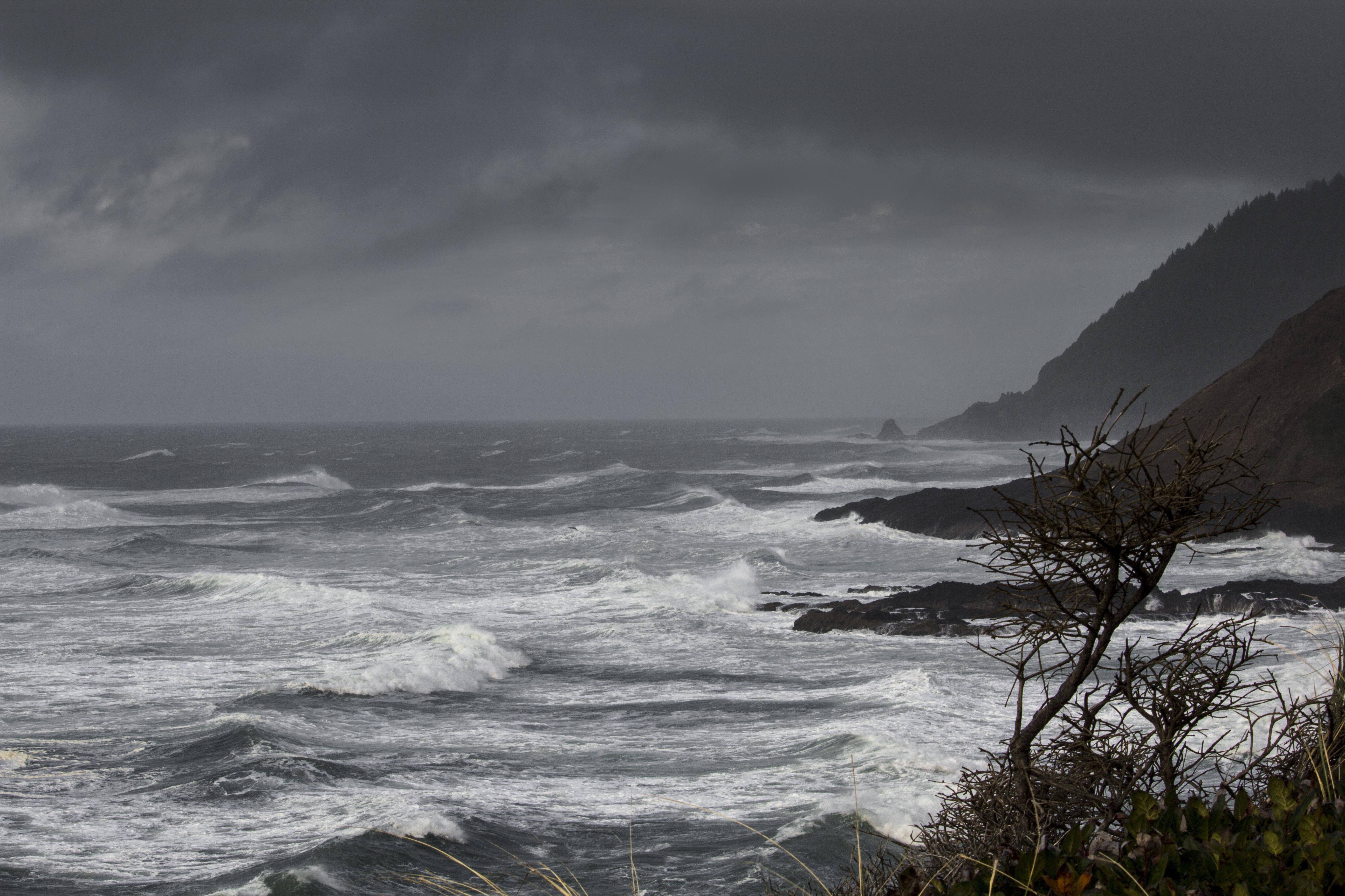 Winter storm , Oregon coast, Bay, Coast, Landscape, Mountain, HQ Photo