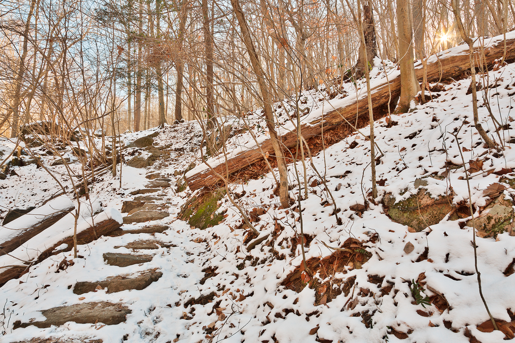 Winter sun step trail - hdr photo
