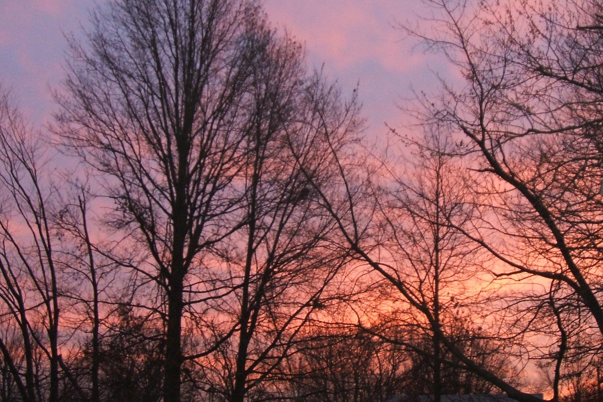 Winter sunrise photo