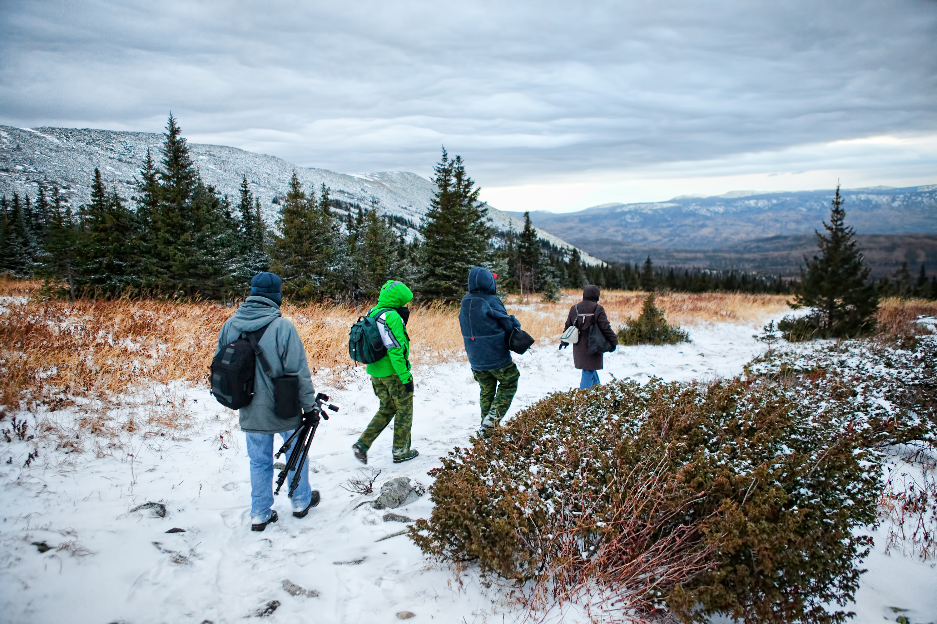 Winter travel, Hikers, Landscape, People, Snow, HQ Photo