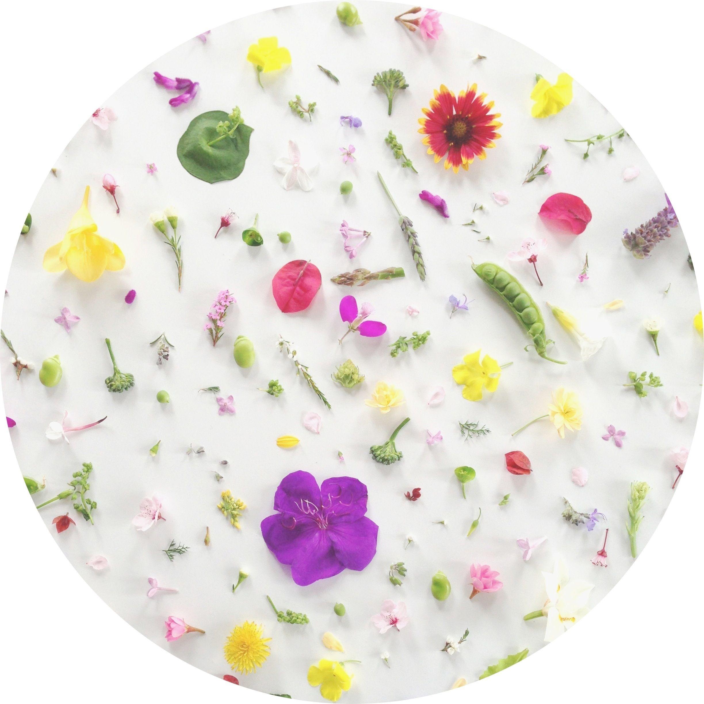 Wishing for Spring already...Happy Spring + a Desktop Wallpaper ...