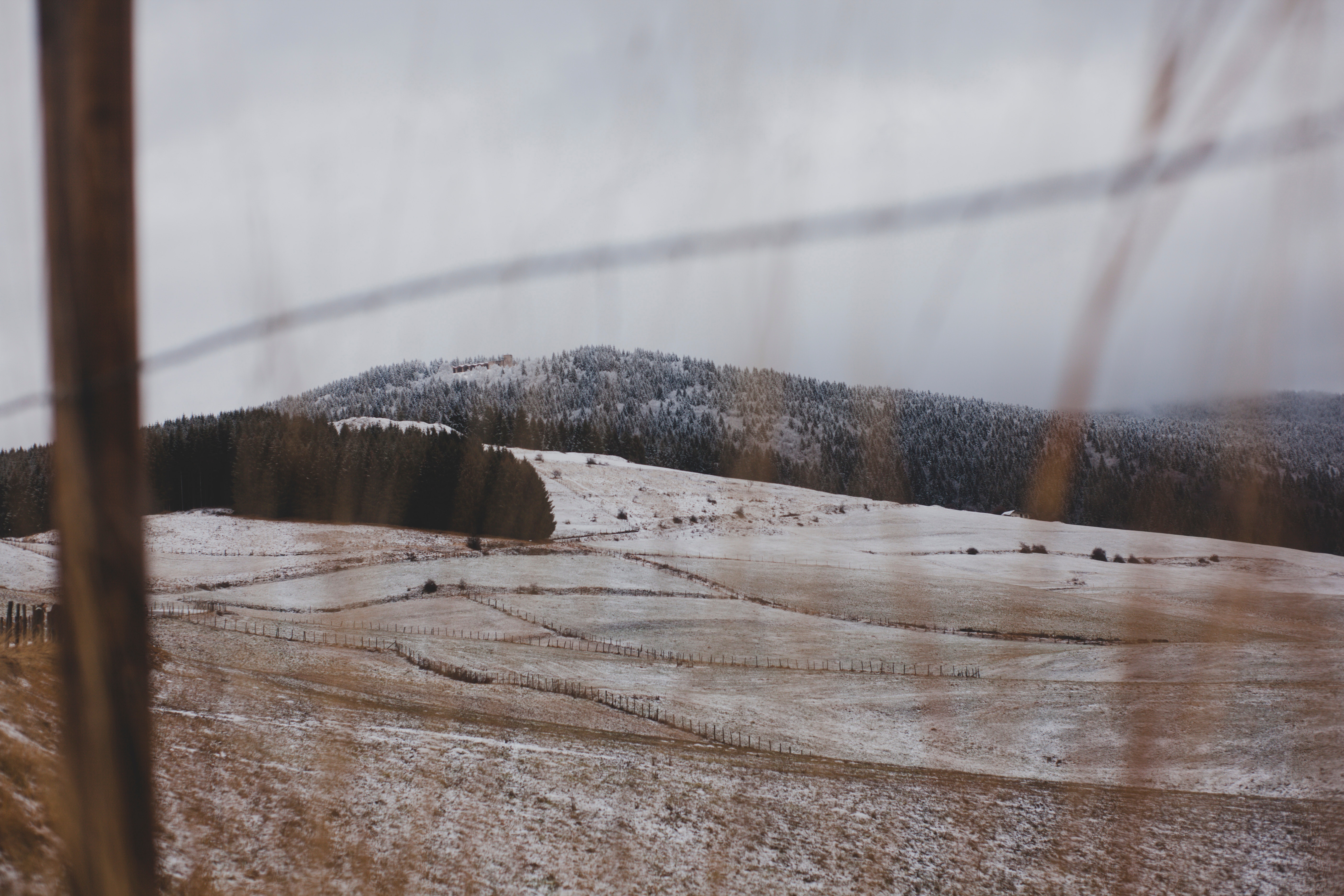 Free photo: Withered Grass Field at Daytime - Sky, Snow, Season ...
