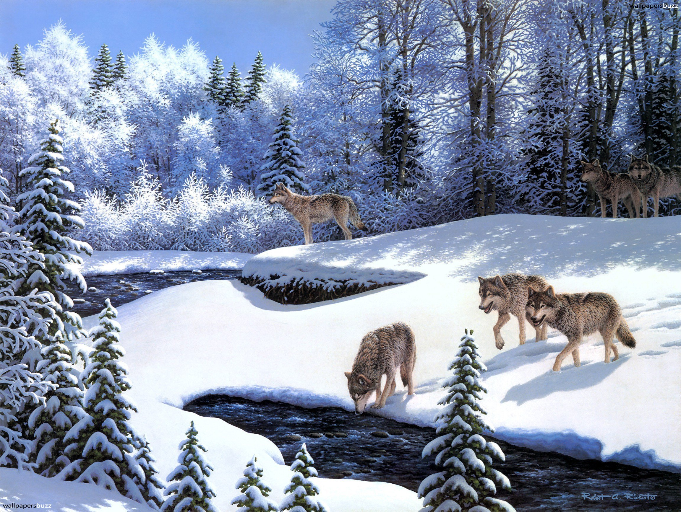 Wolves in the winter forest HD Wallpaper