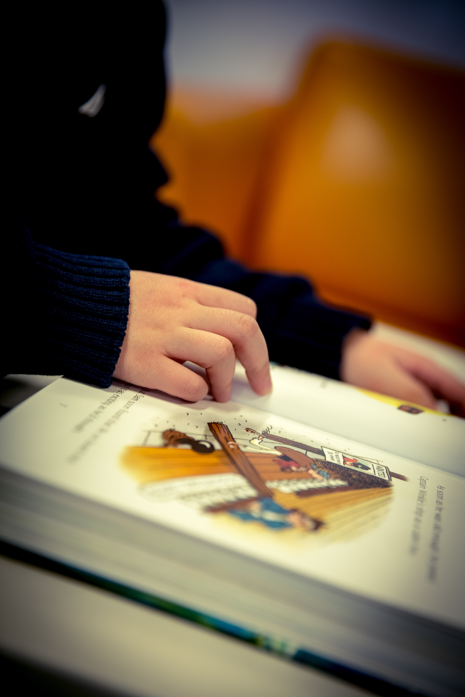 Woman Hand, Adult, Literature, Woman, Study, HQ Photo