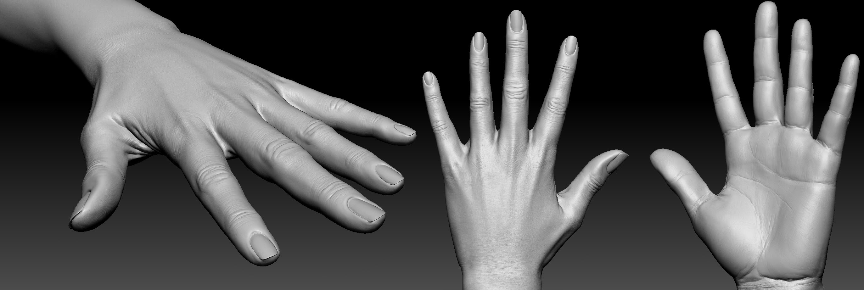 Realistic woman hand by Eugenio Miolo   3D   CGSociety