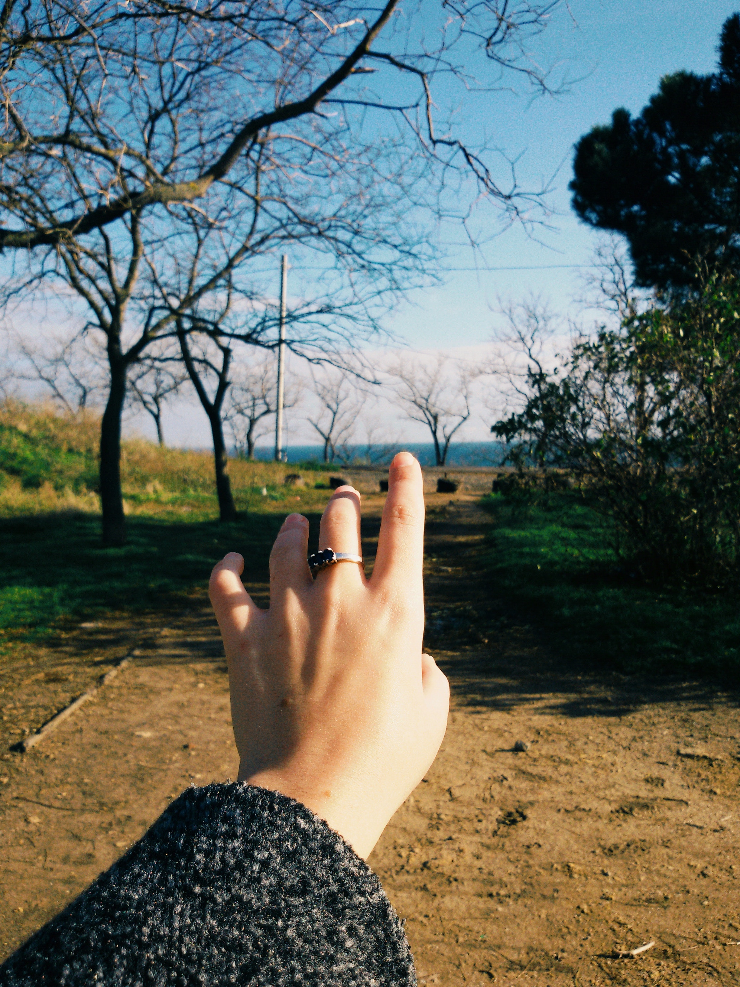 Woman hand on bare tree against sky photo