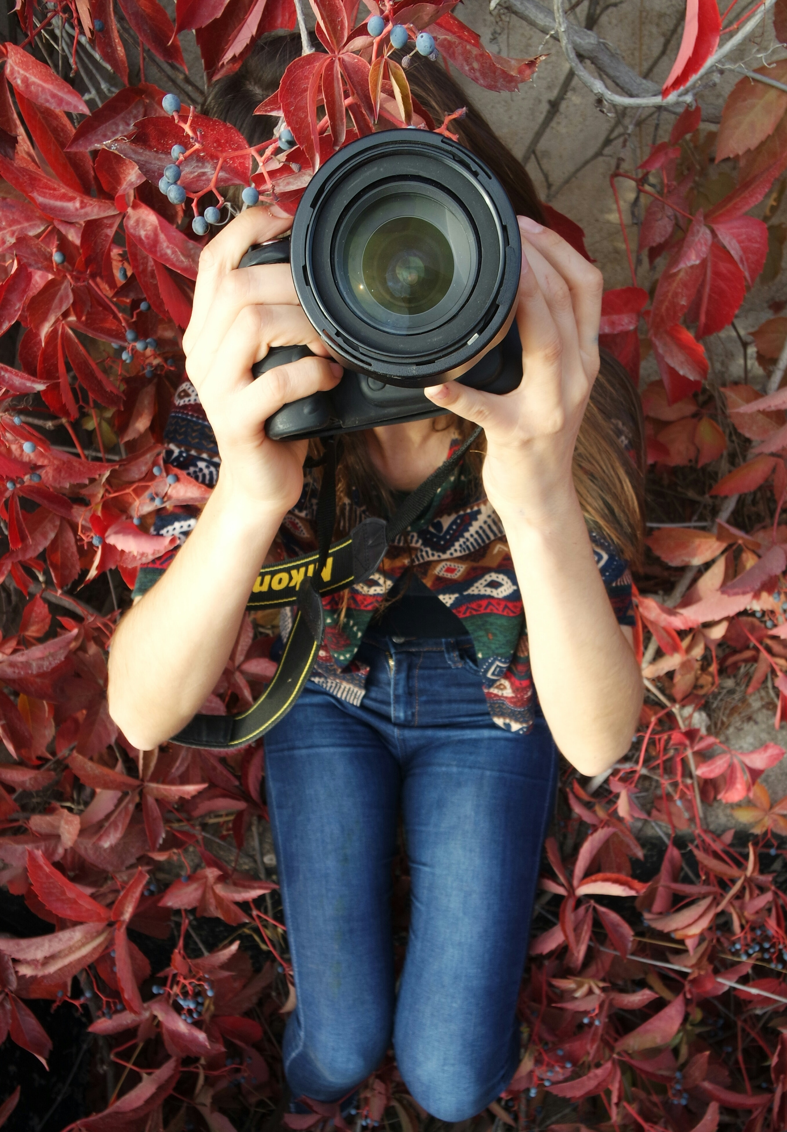 Woman holding dslr camera sitting on red leaved plant photo