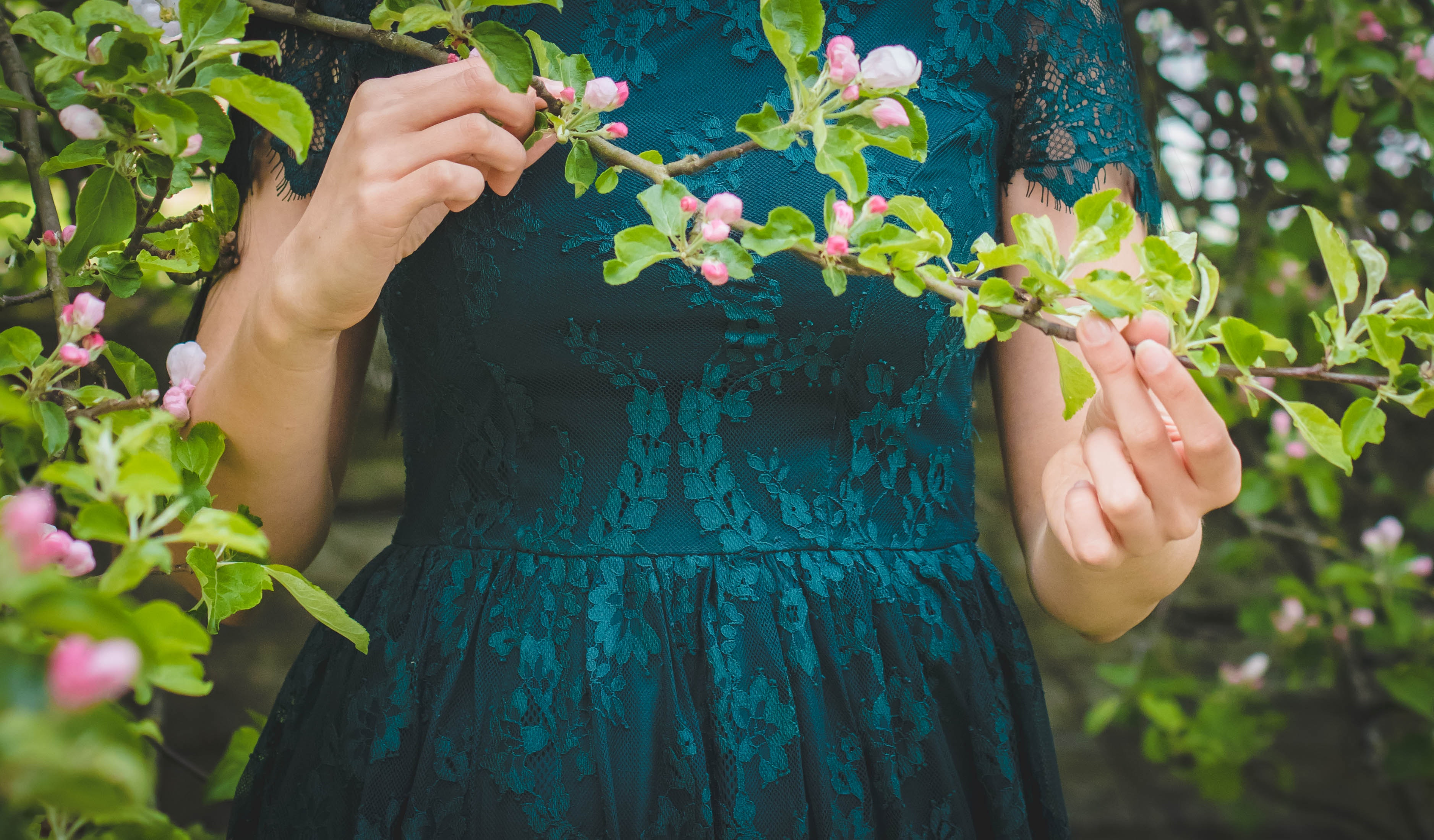 Woman Holding Green Leafed Plant, Bloom, Blossom, Dress, Environment, HQ Photo