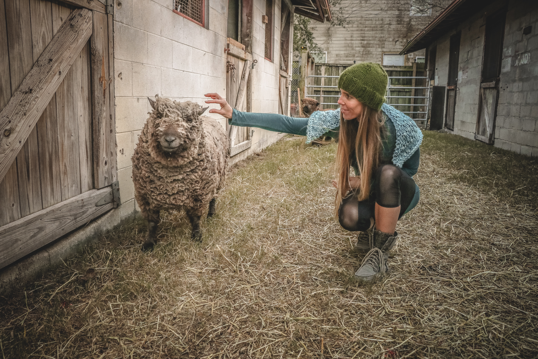 Woman holding sheep beside wall photo