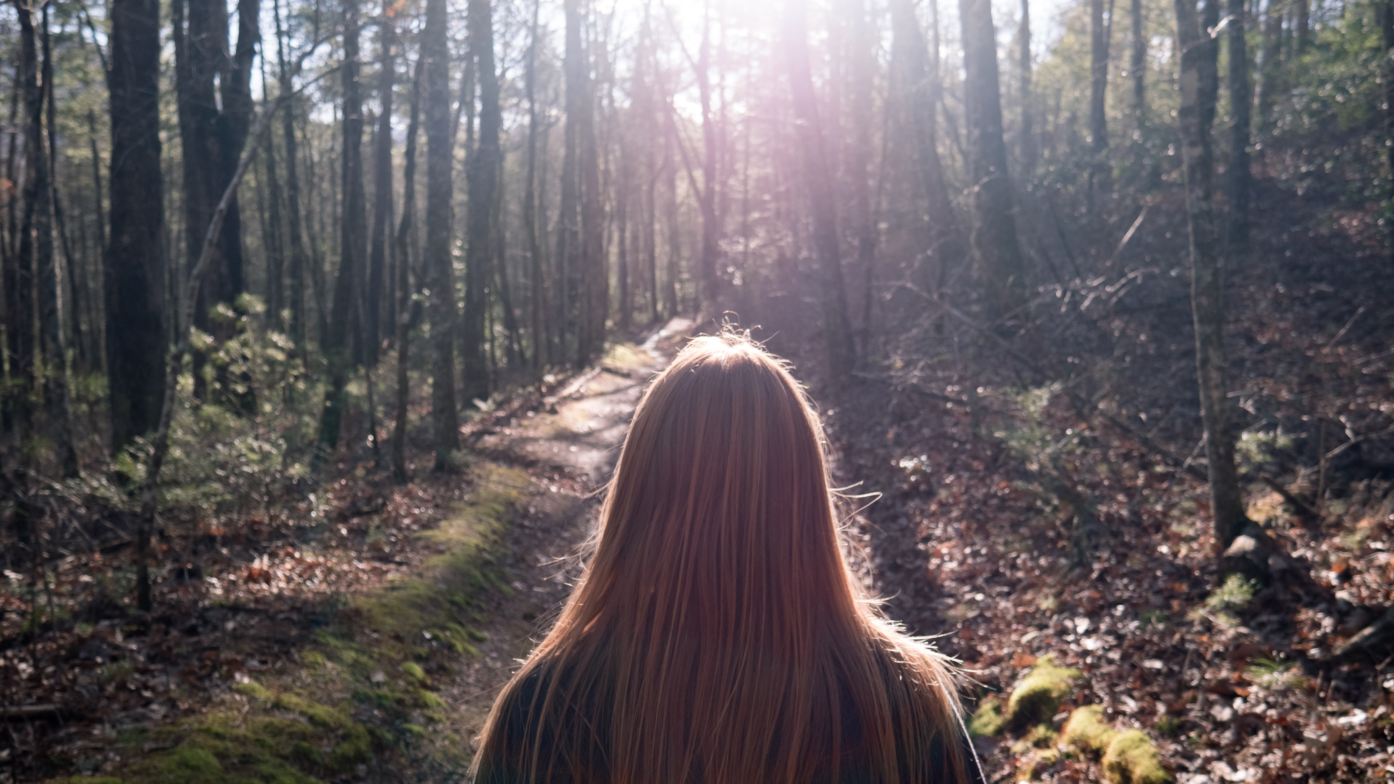 Woman in Black Top Standing Between Trees, Backlight, Outdoors, Trees, Trail, HQ Photo