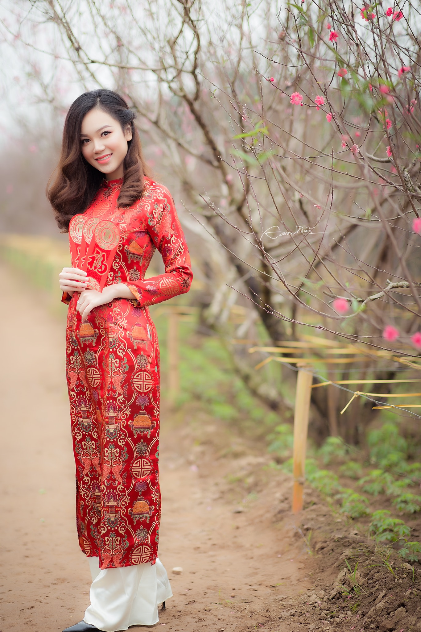 Woman in Red Crew-neck Long-sleeved Dress Near Bare Tree, Adult, Outdoors, Woman, Tree, HQ Photo