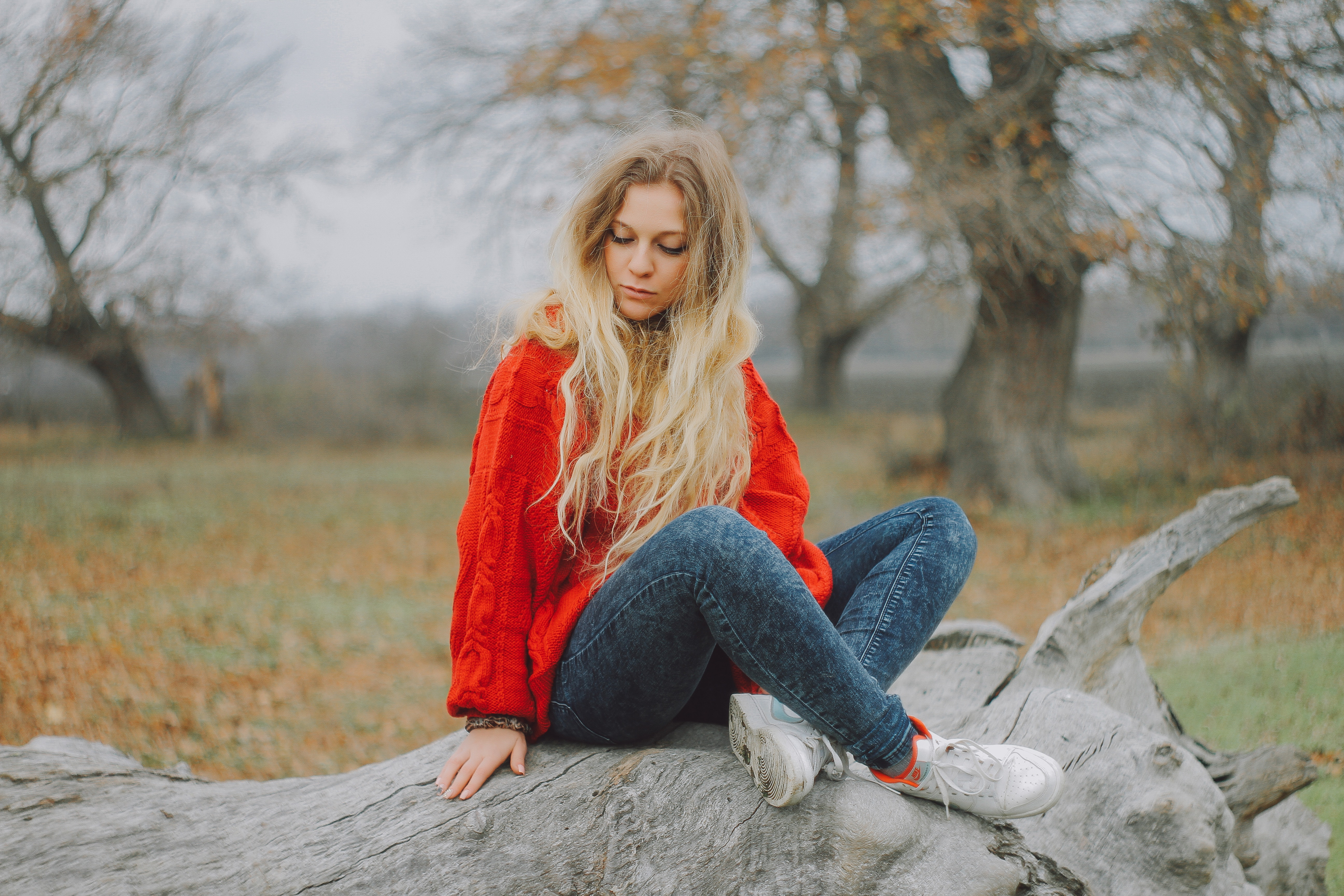 Woman in red sweater sitting on cutted tree photo