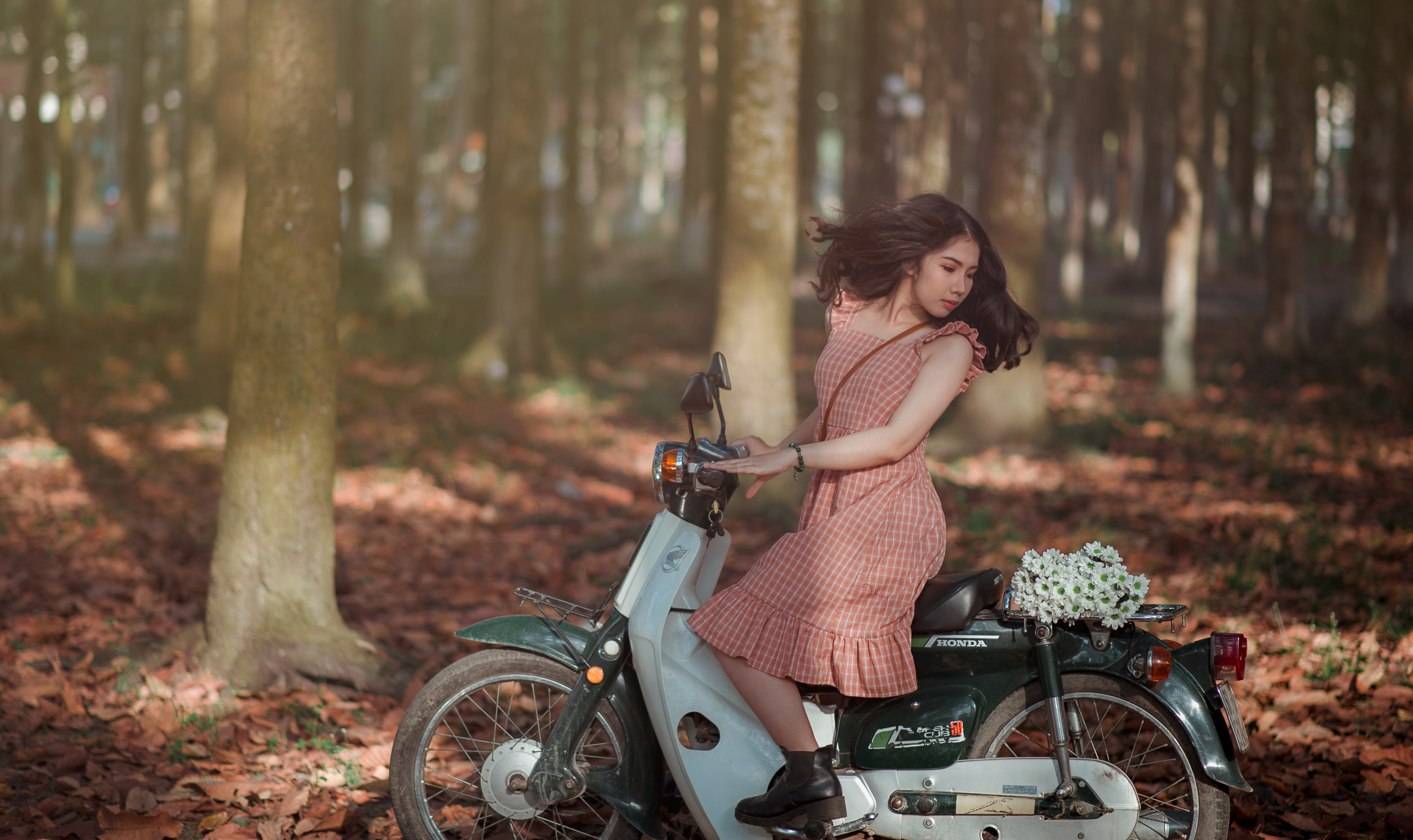 Woman Riding Black and White Motor Scooter in Jungle, Beautiful flowers, Person, Woman, Wheels, HQ Photo
