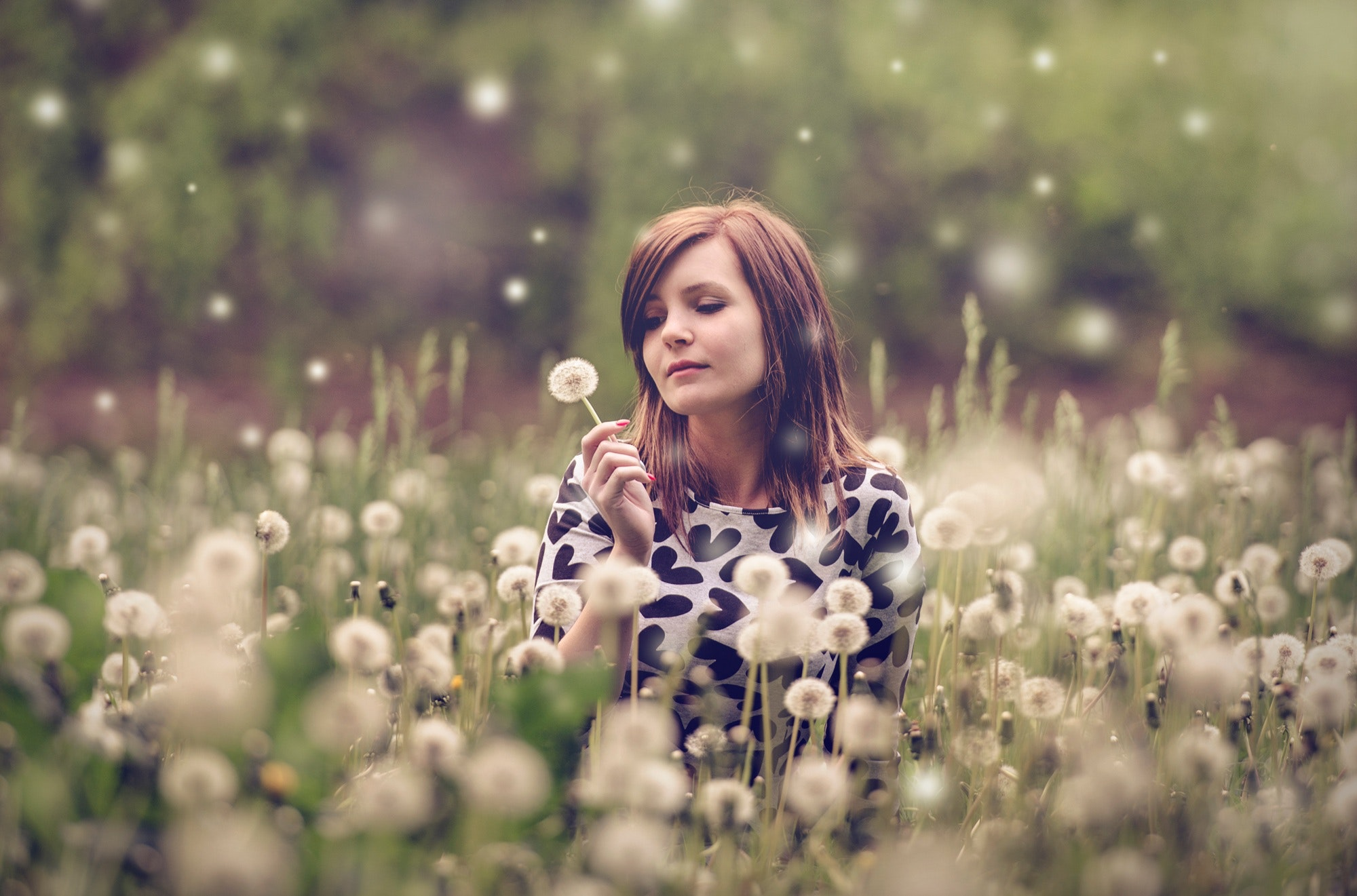 Woman sitting in a field of flowers photo