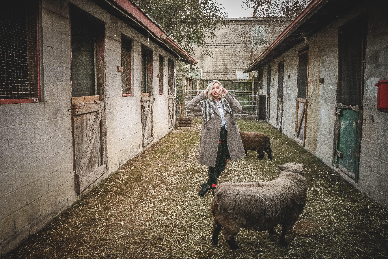 Woman standing near sheep photo