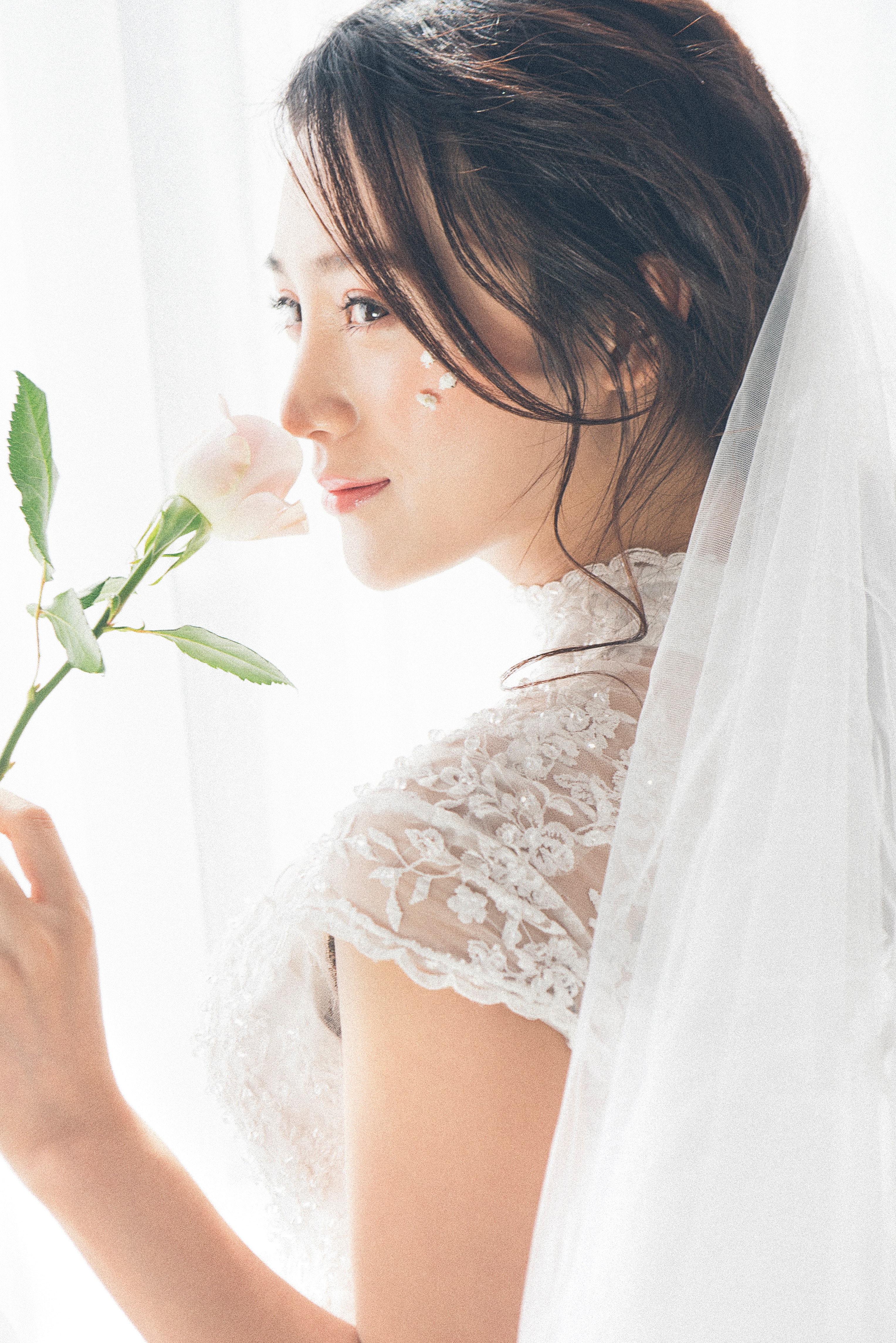 Free photo: Woman Wearing White Lace Encrusted Wedding Gown and Veil ...