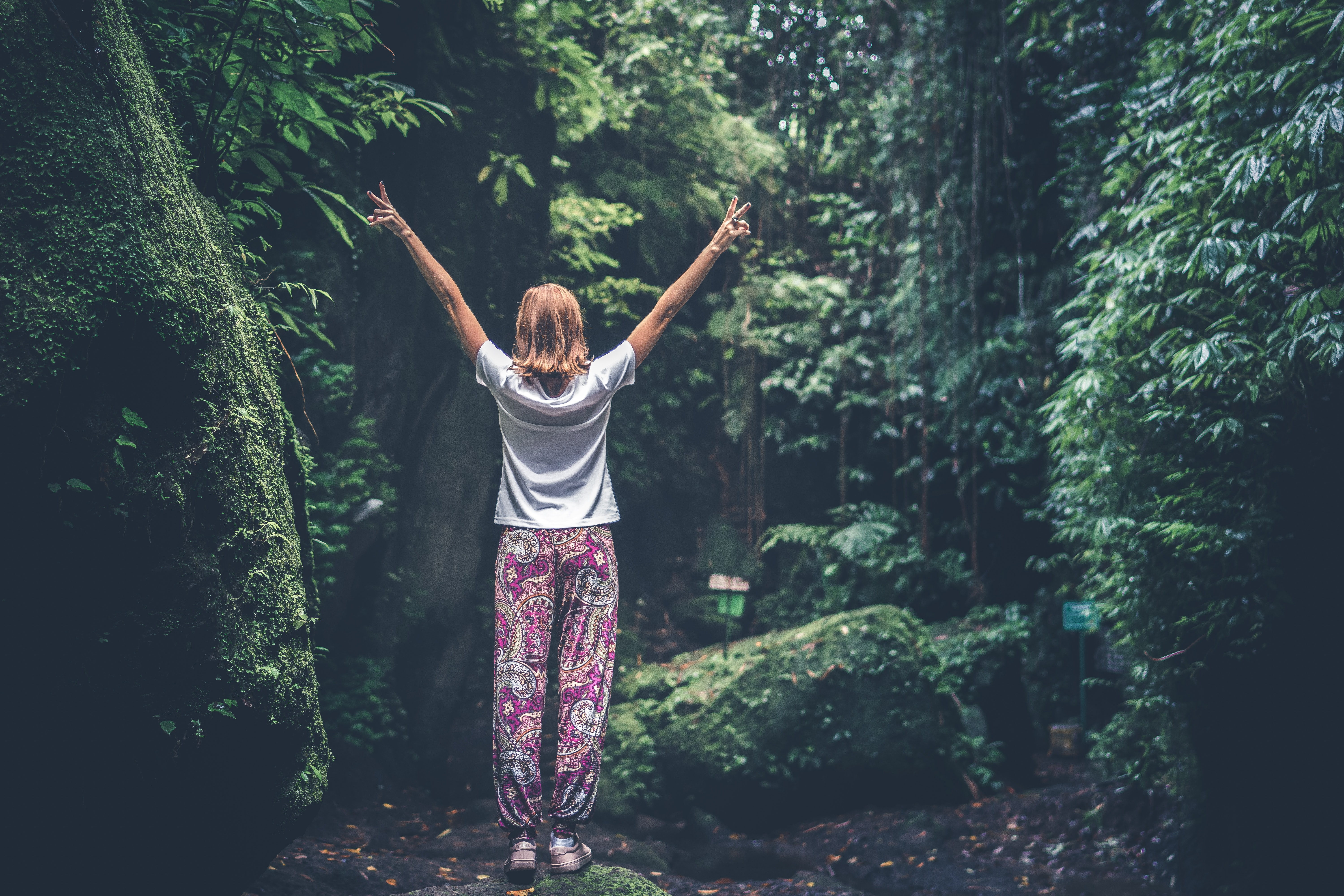Woman with raising arms facing pathway between forest trees photo