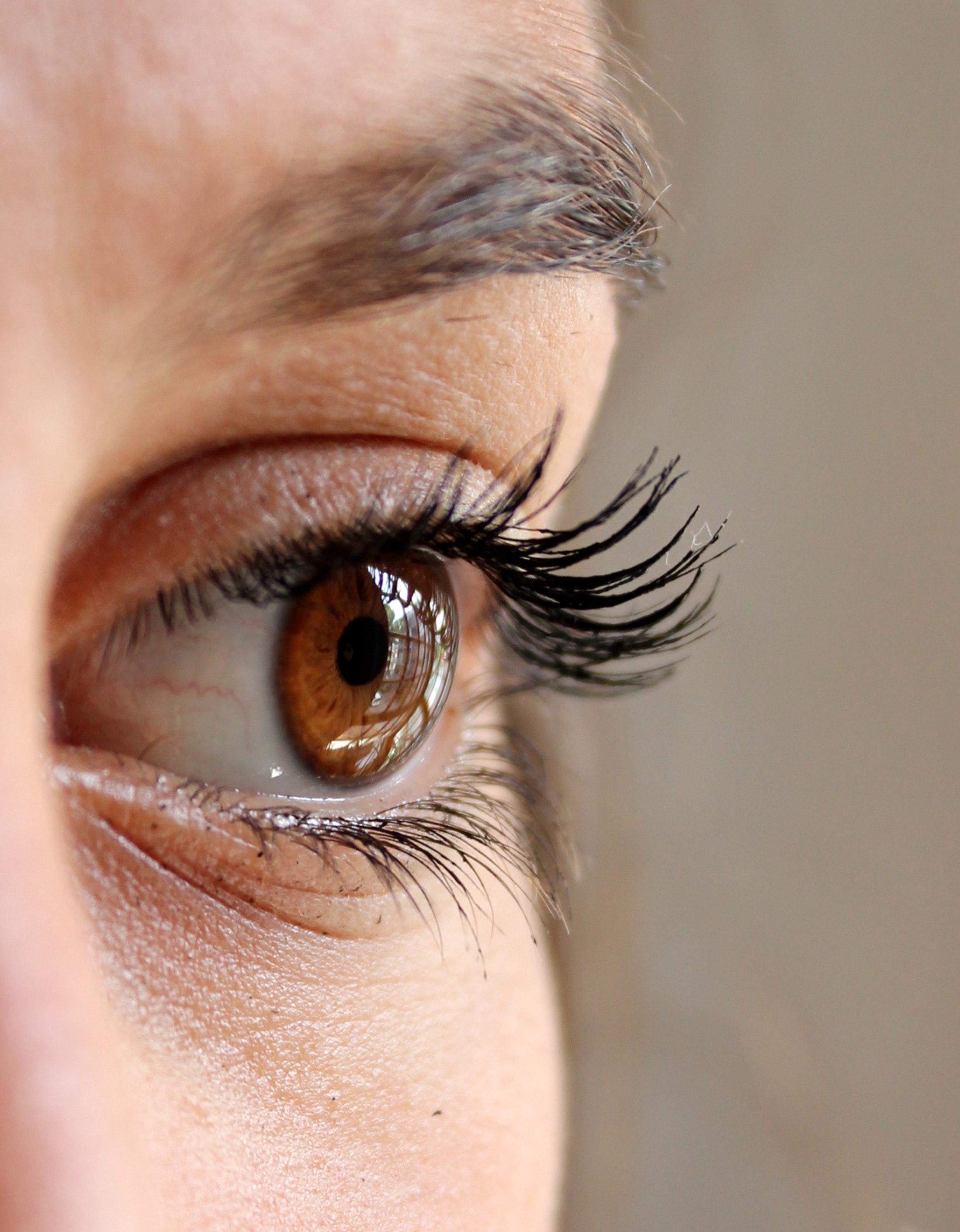 Women's Black Mascara, Close-up, Eye, Eyebrow, Eyelashes, HQ Photo