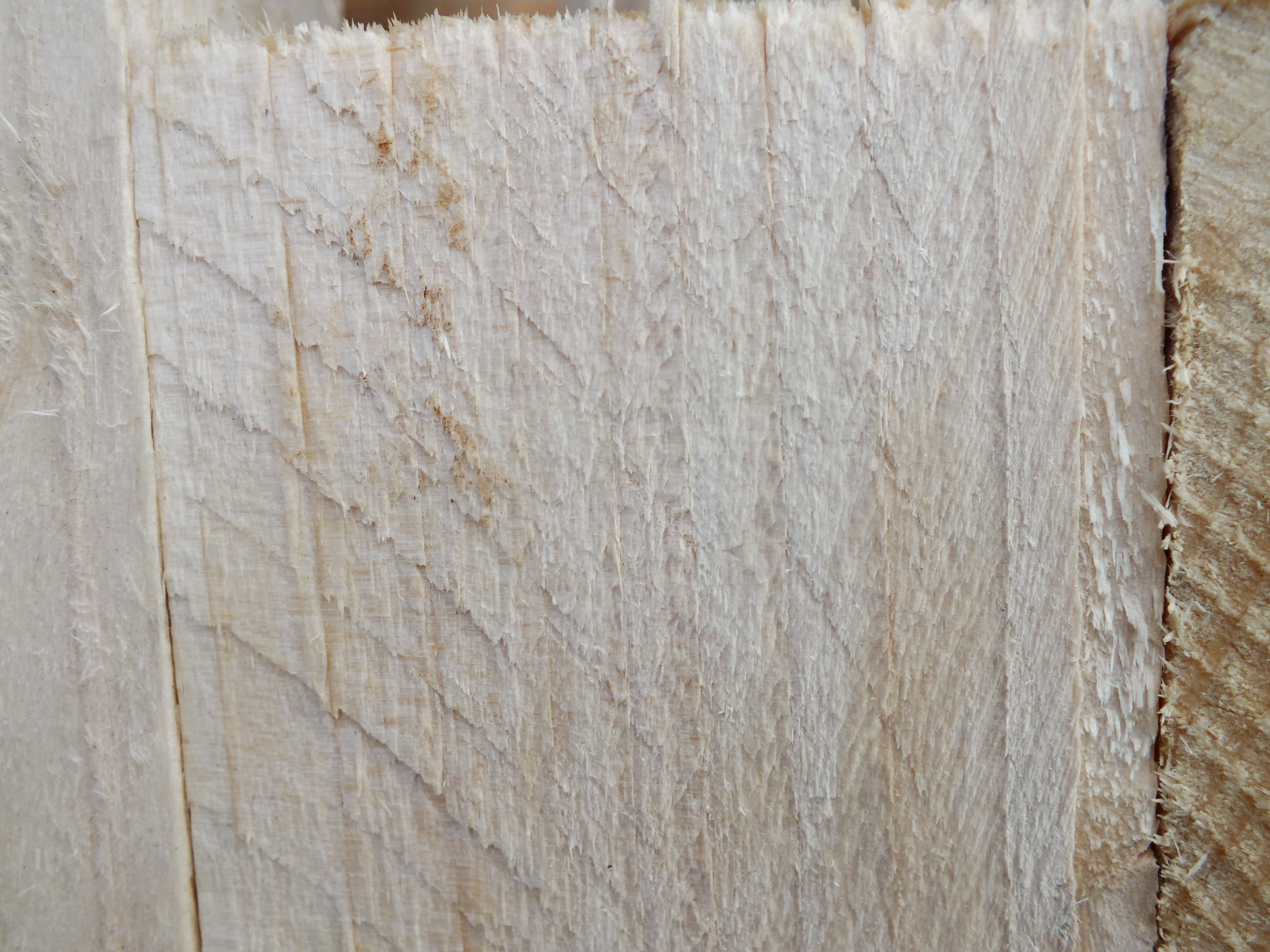 Wood, Board, Texture, Tree, HQ Photo
