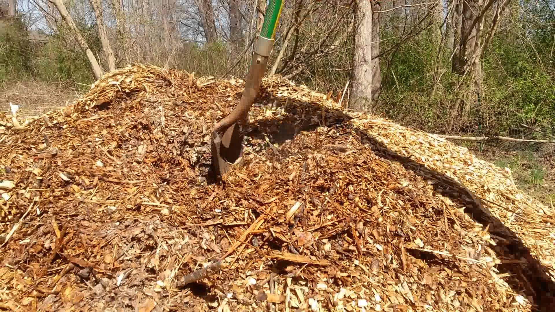 Composting wood chips - YouTube