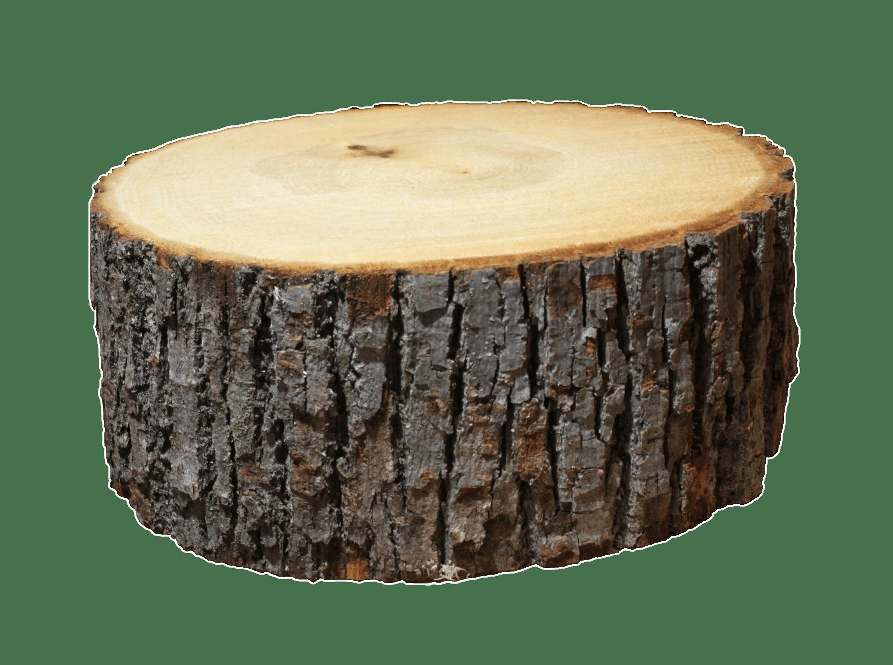 Wood log photo