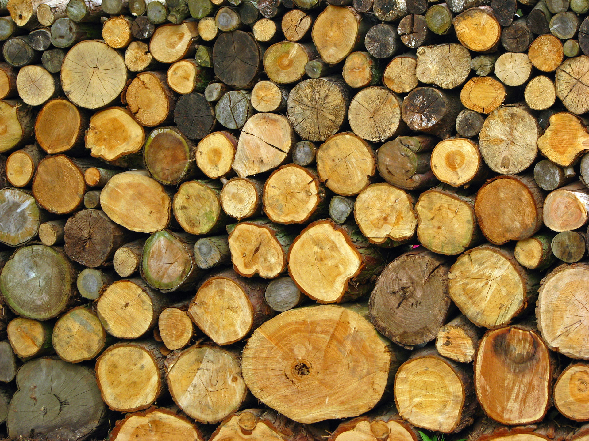 Logs Background Free Stock Photo - Public Domain Pictures