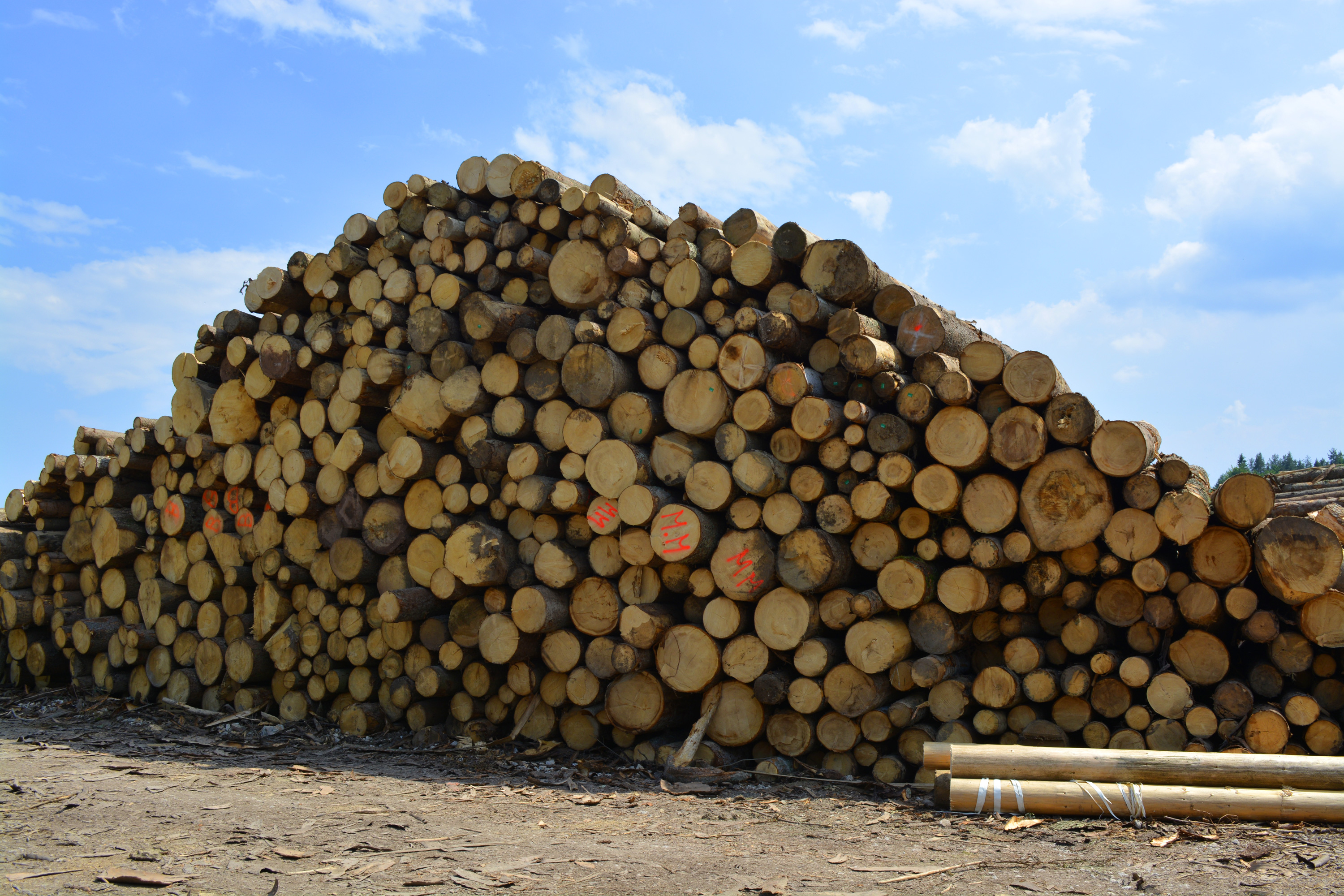 Wood logs, Woodpile, Piece, Wooden, Wood, HQ Photo