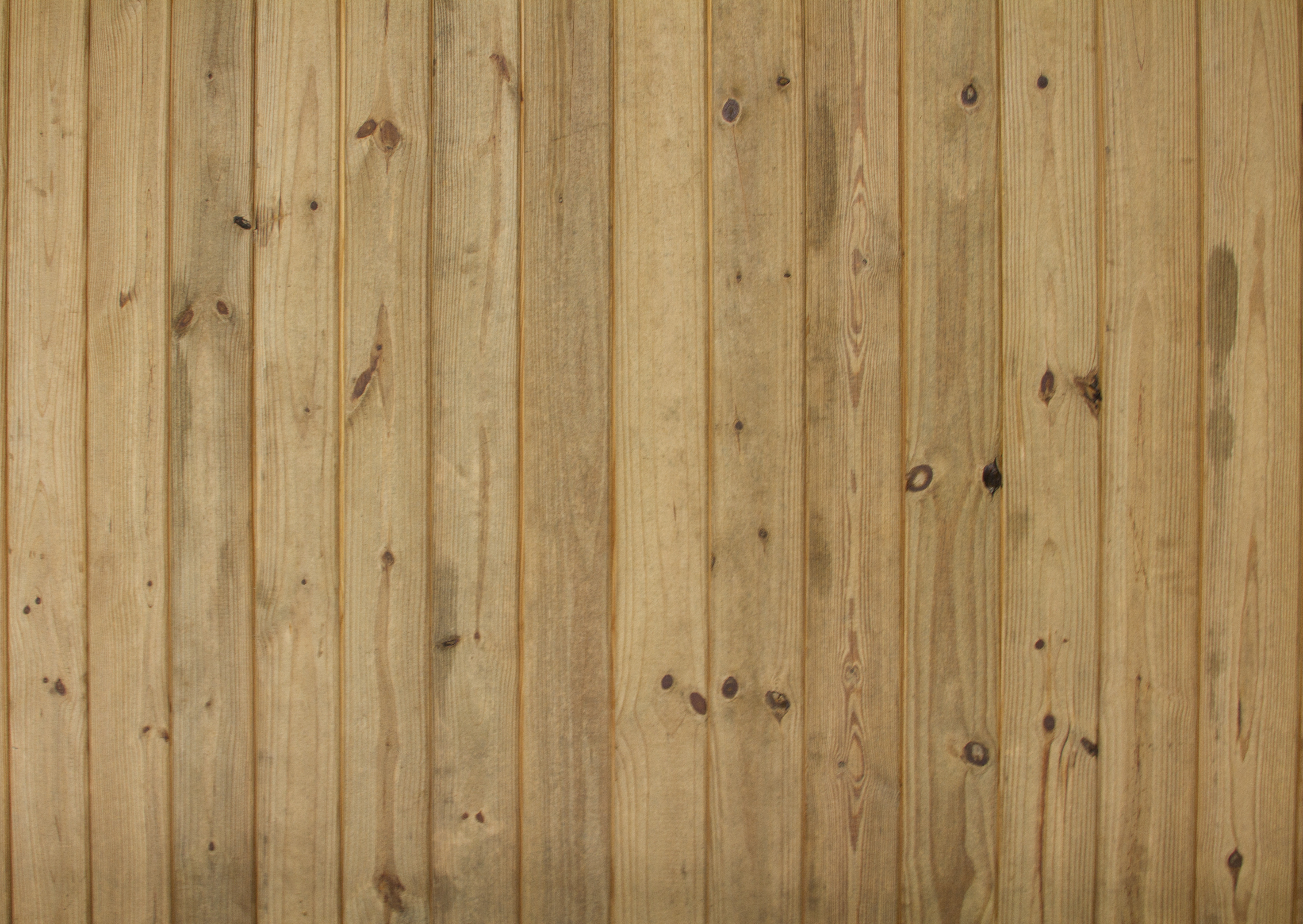 Natural Wood Panels Texture - 14Textures