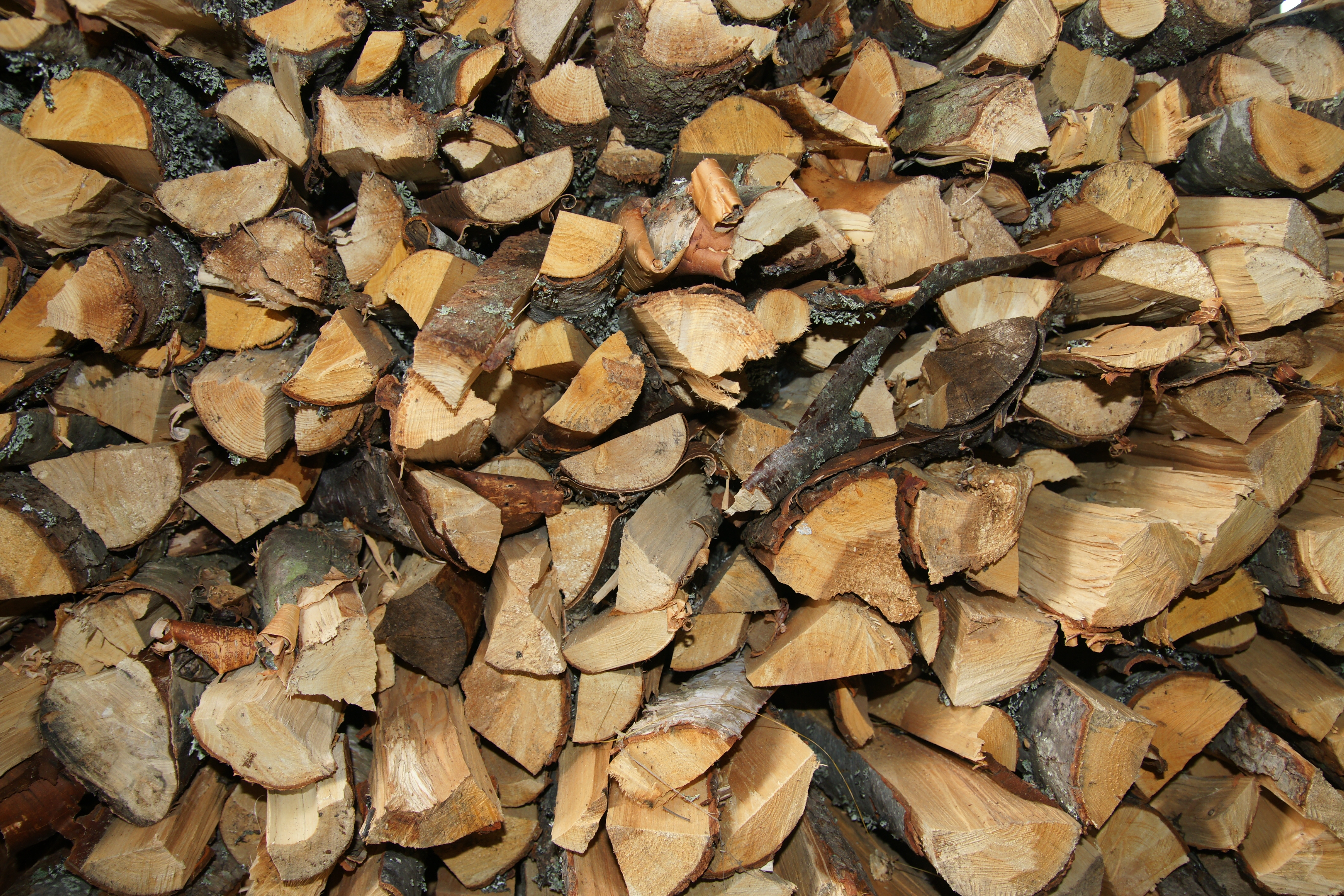 File:Woodpile.JPG - Wikimedia Commons