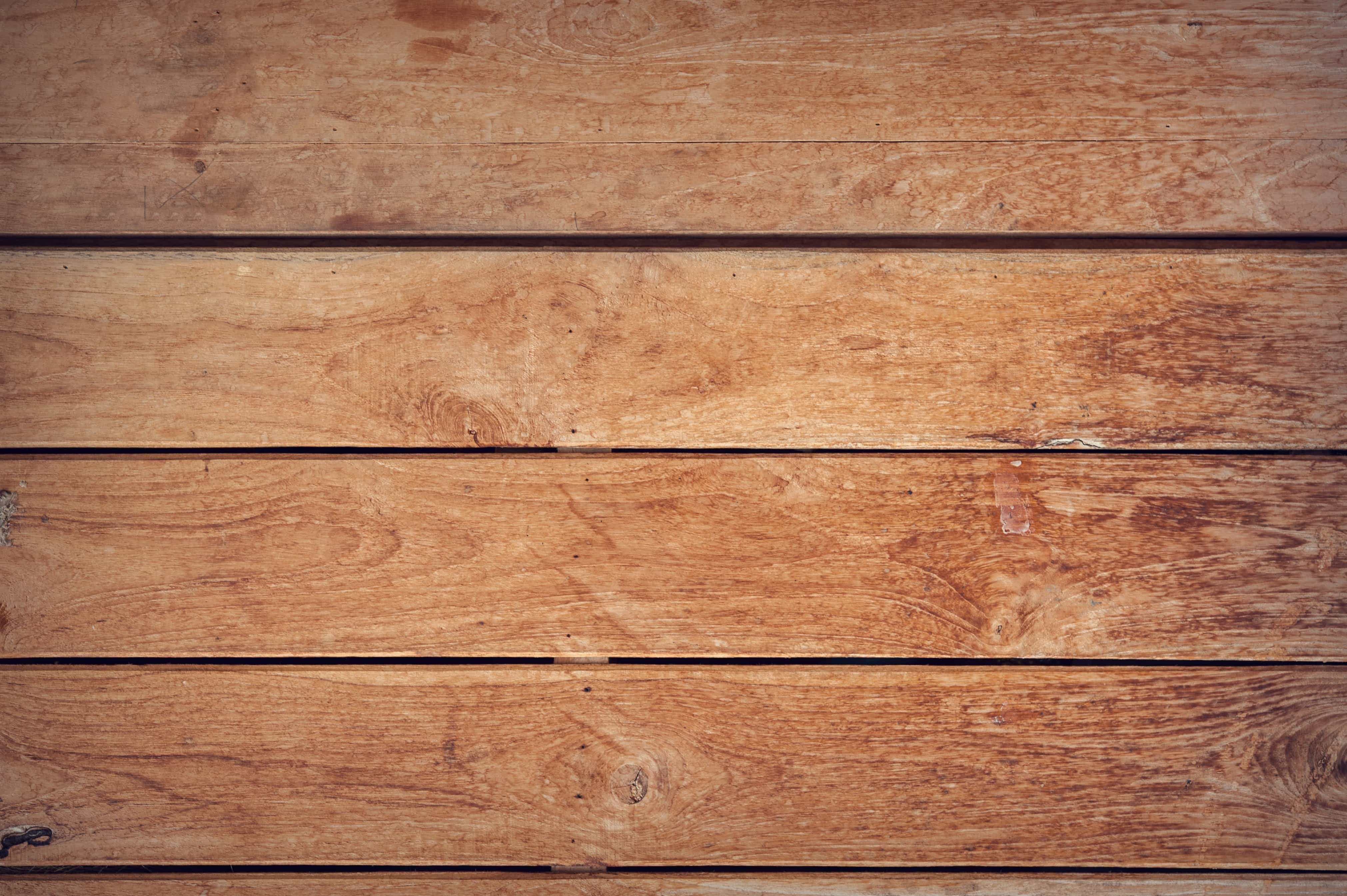 Free Photo Wood Surface Tree Texture Wood Free