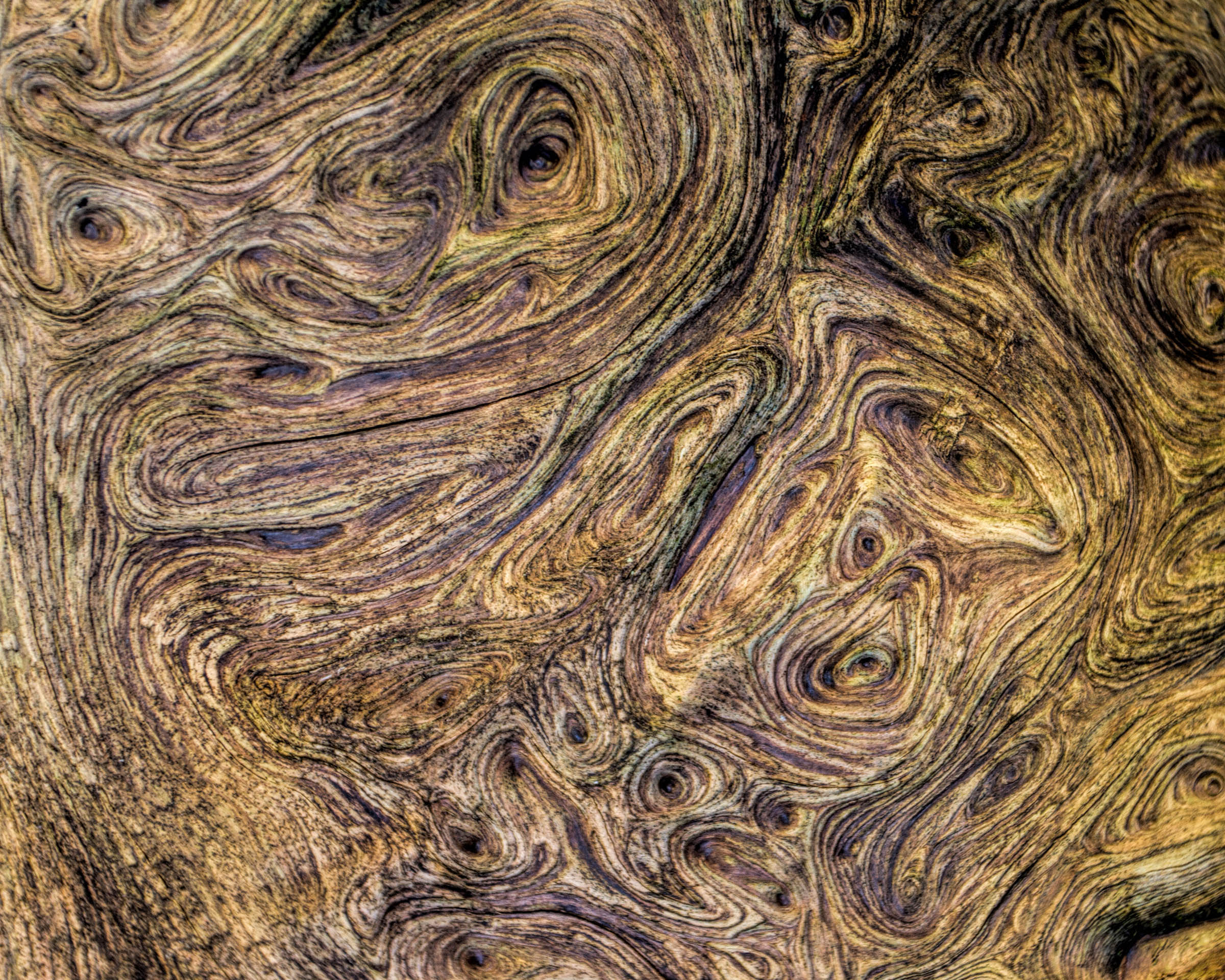 Wood Texture, Abstract, Surface, Plank, Retro, HQ Photo