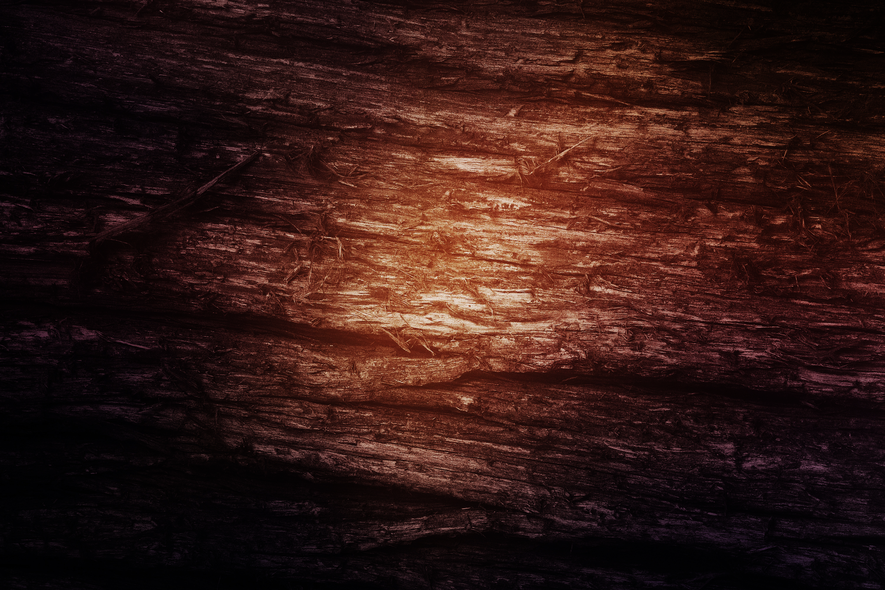 Wood texture, Abstract, Smooth, Material, Nature, HQ Photo