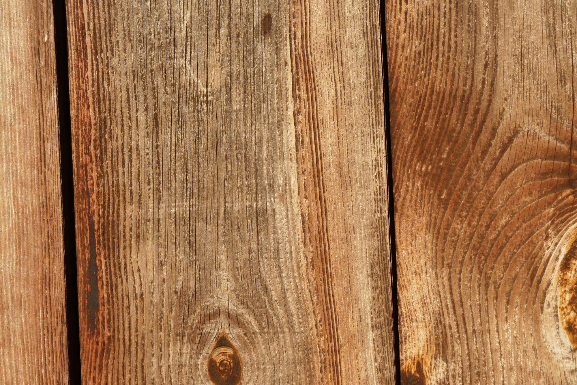 Free Photo Wood Texture