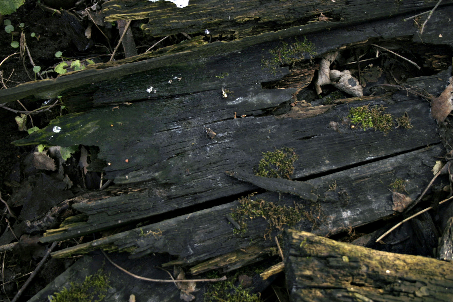 Wood texture, Black, Surface, Texture, Timber, HQ Photo