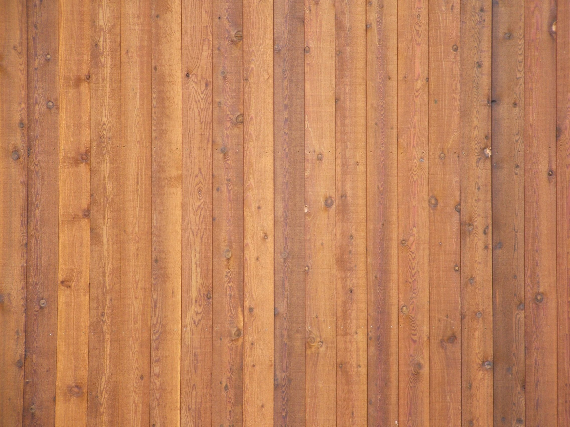 Wood wall texture photo