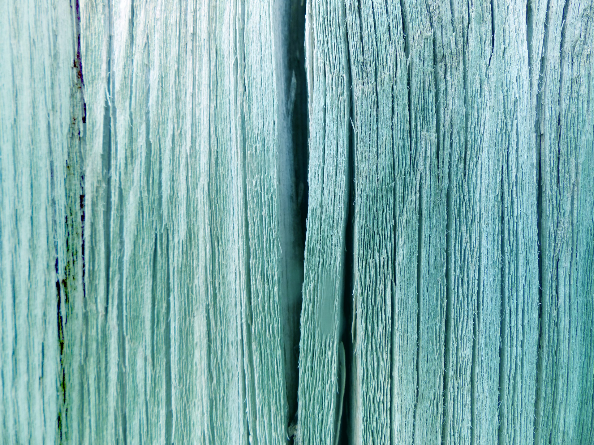 Wood Fence Texture Closeup Free Stock Photo - Public Domain Pictures