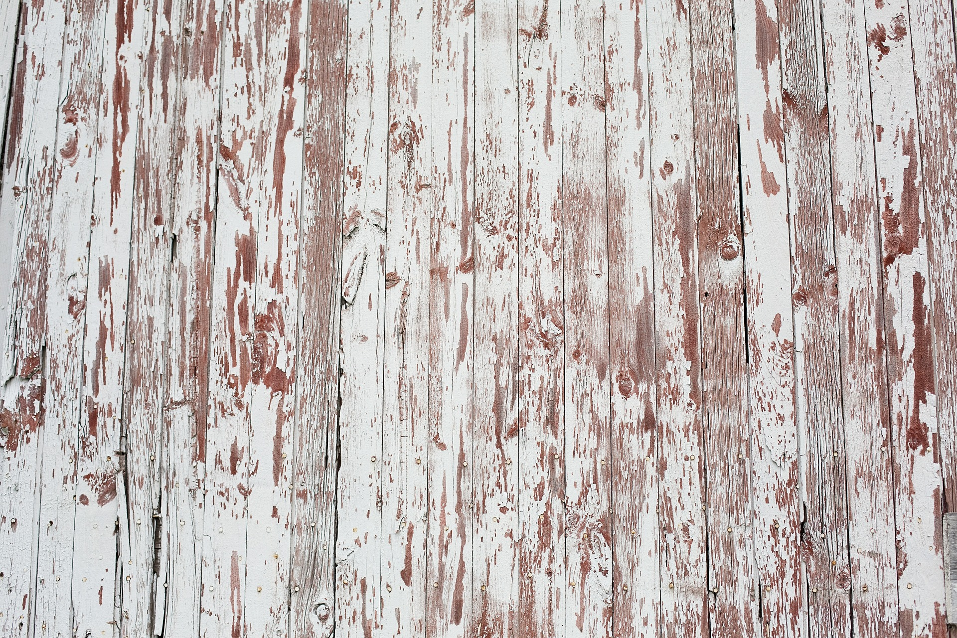 Wooden Texture, Wooden, Wood, Texture, Design, HQ Photo