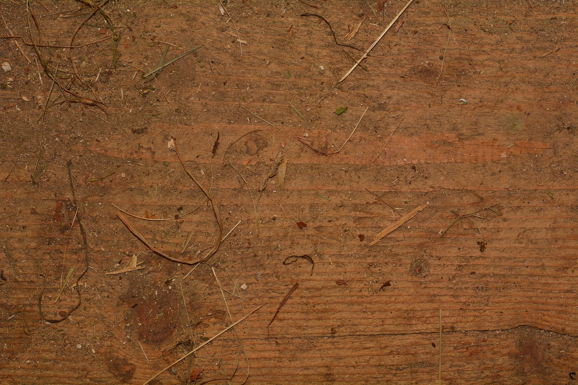 Wooden Texture, Fuel, Plank, Texture, Timber, HQ Photo