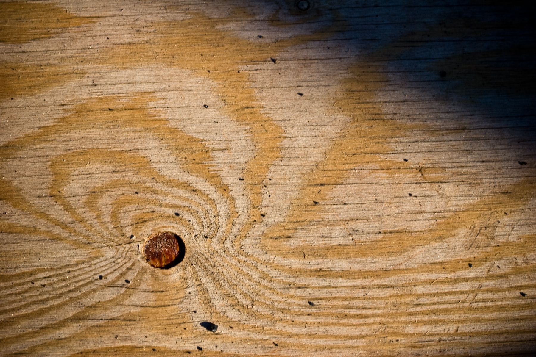 Wooden texture, Shadow, Surface, Texture, Tree, HQ Photo