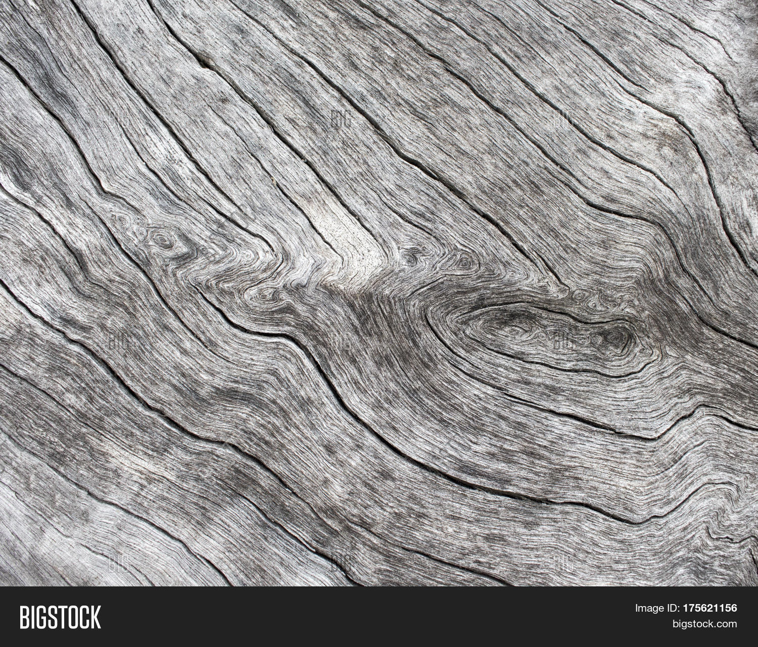 Silver Wood Background Image & Photo (Free Trial) | Bigstock