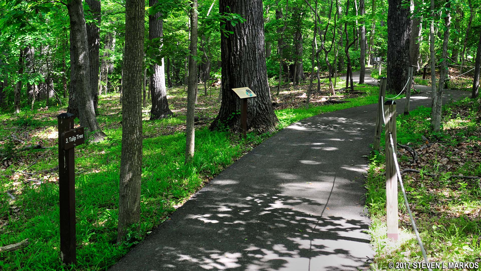 Rock Creek Park | EDGE OF THE WOODS TRAIL |