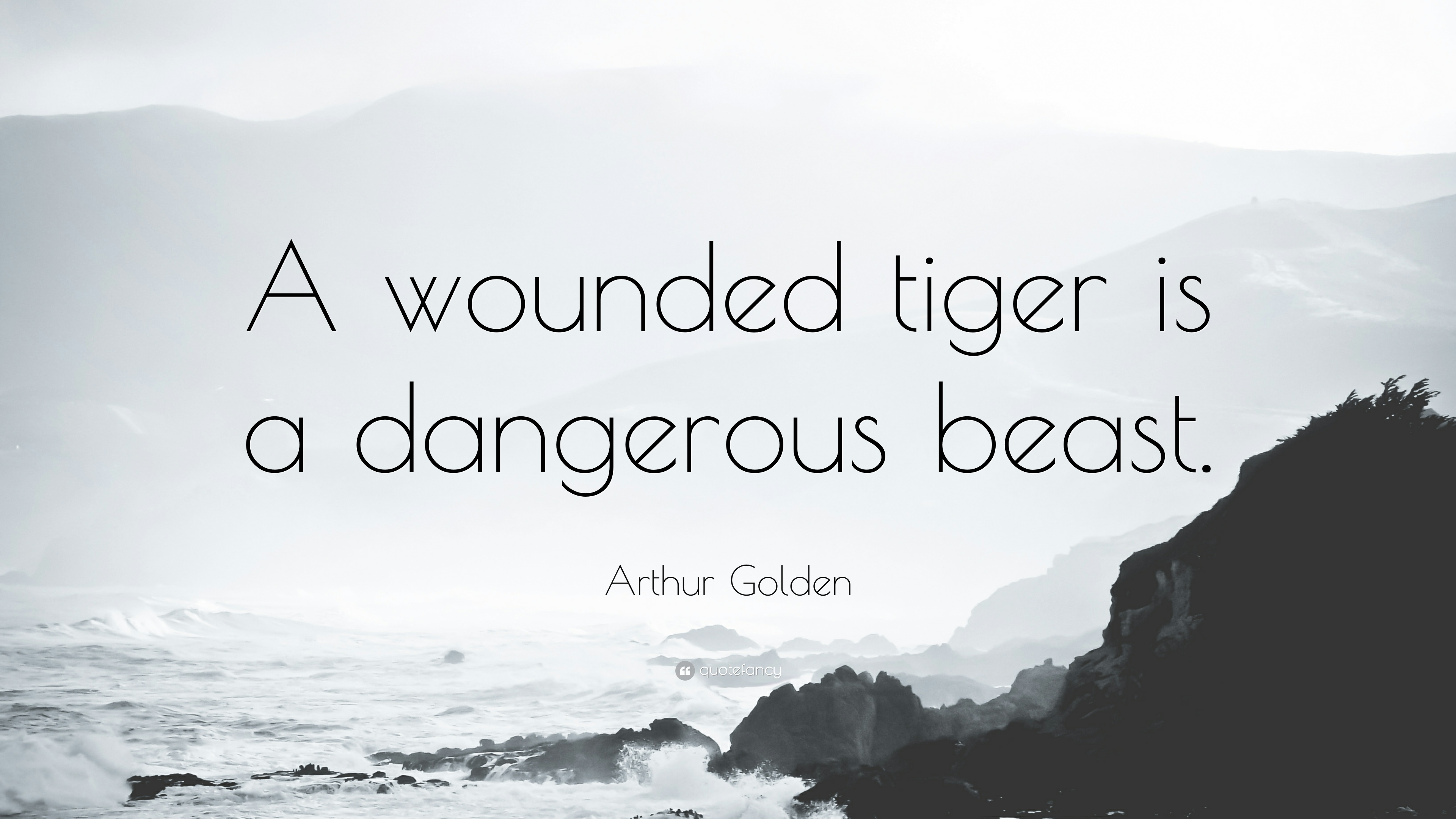Wounded tiger photo